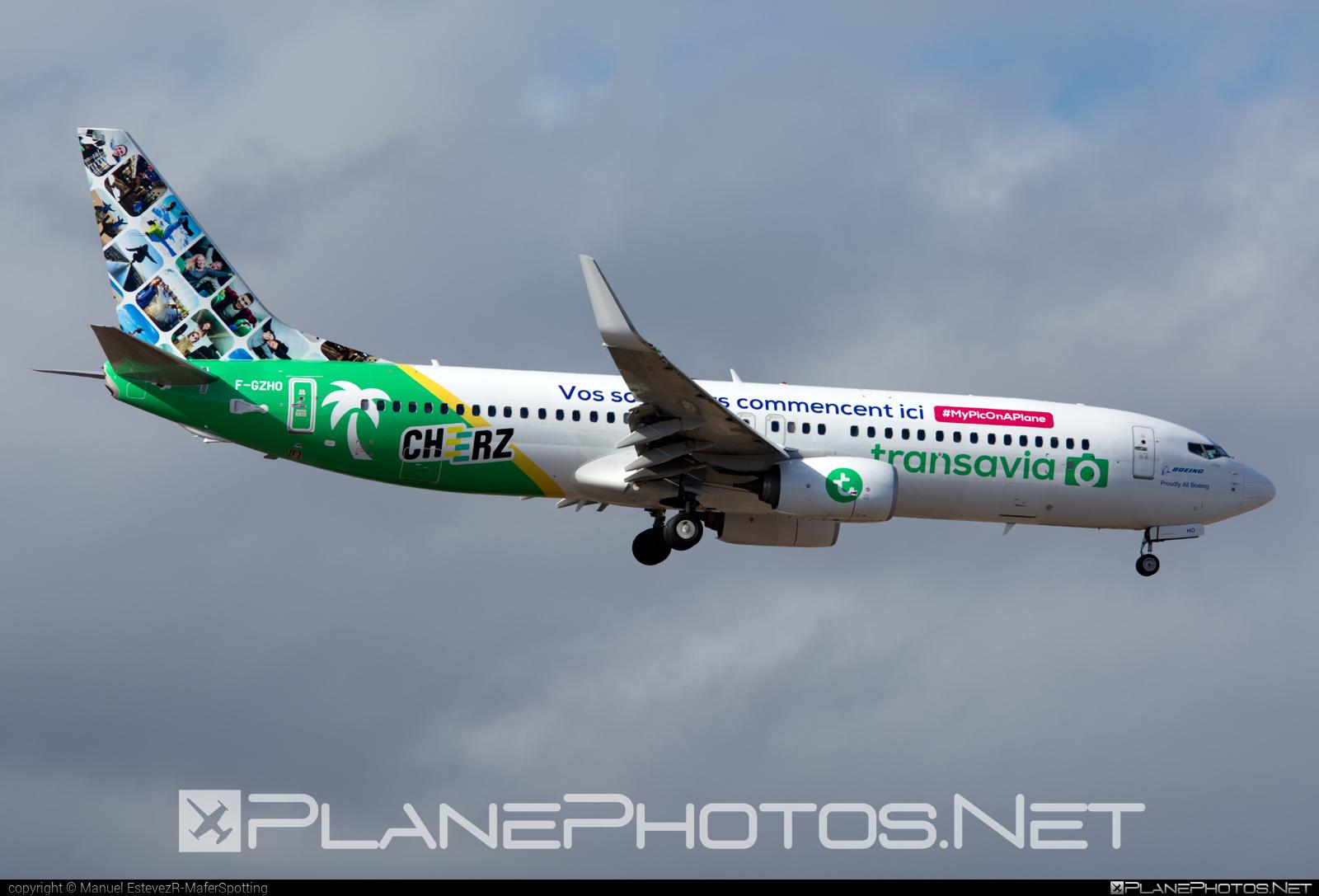 Boeing 737-800 - F-GZHO operated by Transavia France #b737 #b737nextgen #b737ng #boeing #boeing737