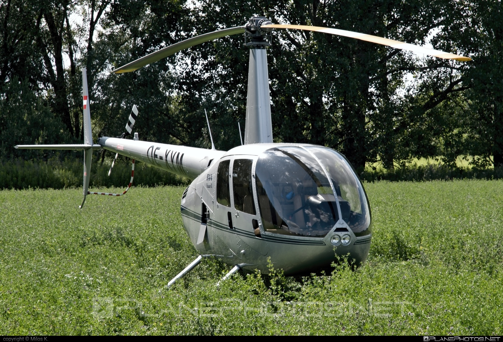 Robinson R44 Raven II - OE-XYM operated by AVE FERMO s.r.o. #robinson