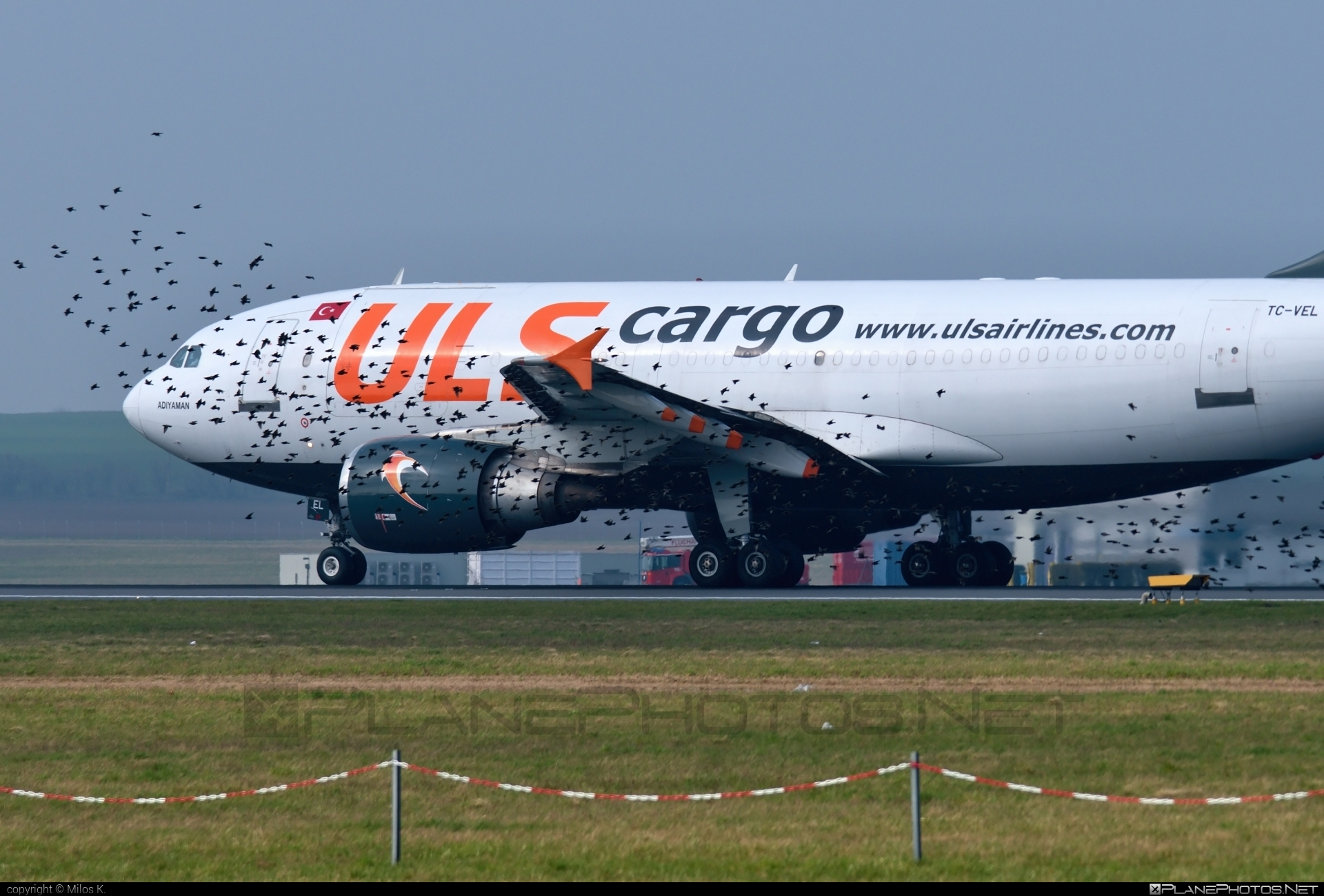 Airbus A310-304F - TC-VEL operated by ULS Airlines Cargo #a310 #airbus
