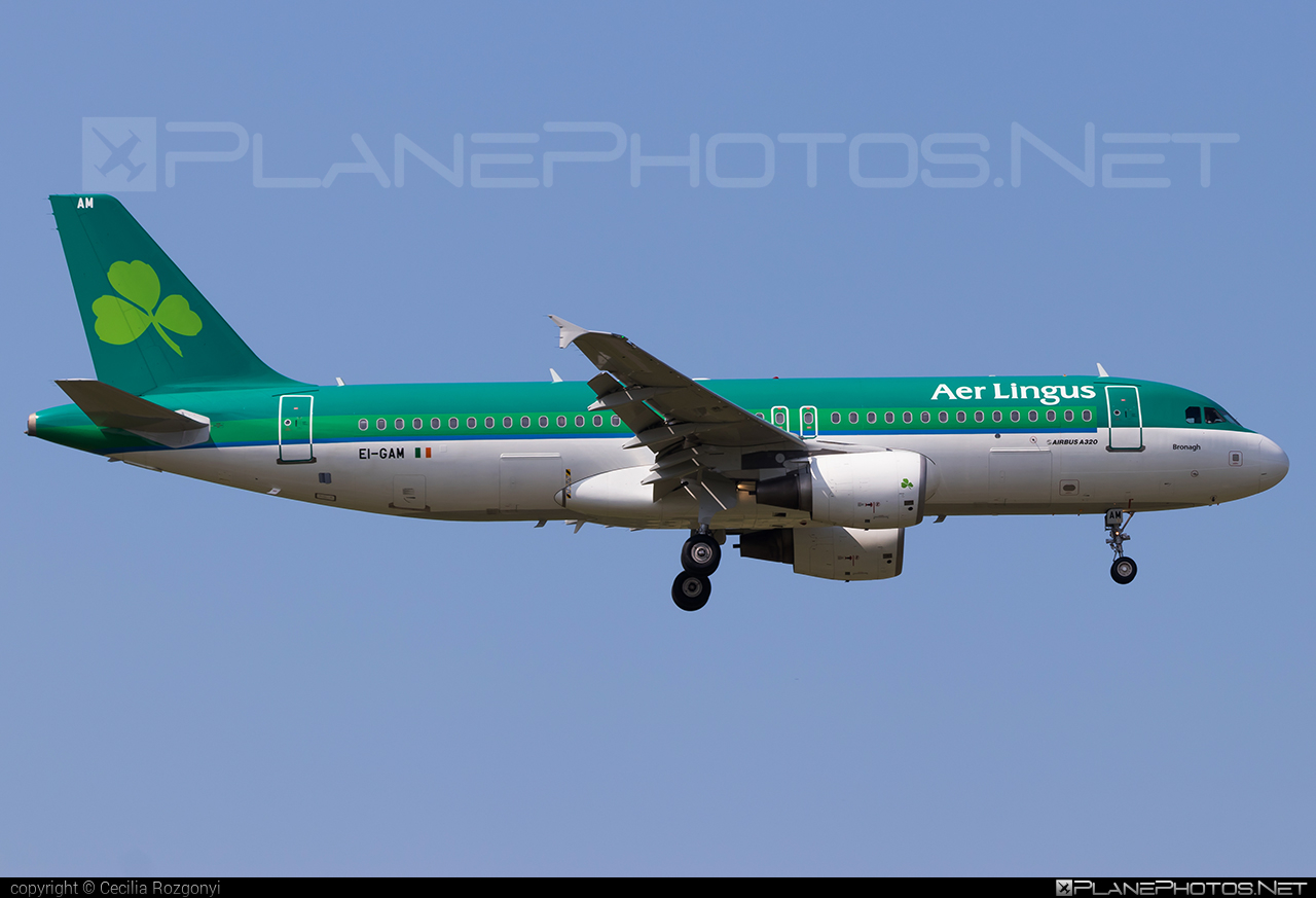 Airbus A320-214 - EI-GAM operated by Aer Lingus #a320 #a320family #aerlingus #airbus #airbus320
