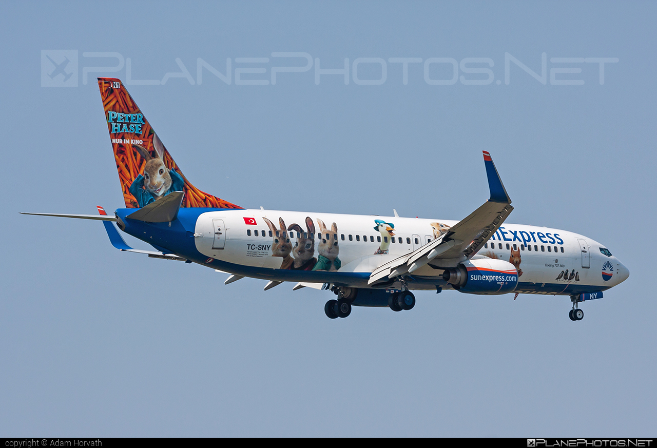 Boeing 737-800 - TC-SNY operated by SunExpress #b737 #b737nextgen #b737ng #boeing #boeing737 #sunexpress
