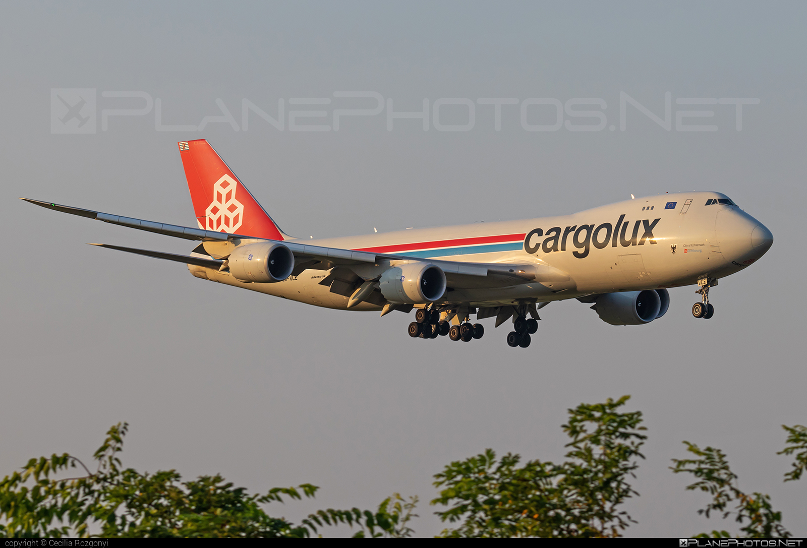 Boeing 747-8F - LX-VCE operated by Cargolux Airlines International #b747 #b747f #b747freighter #boeing #boeing747 #cargolux #jumbo