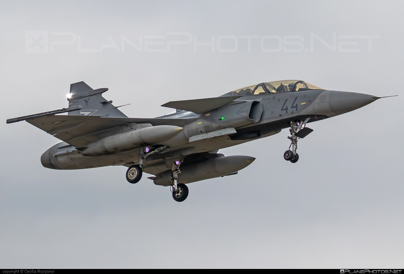Saab JAS 39D Gripen - 44 operated by Magyar Légierő (Hungarian Air Force) #gripen #hungarianairforce #jas39 #jas39d #jas39gripen #magyarlegiero #saab