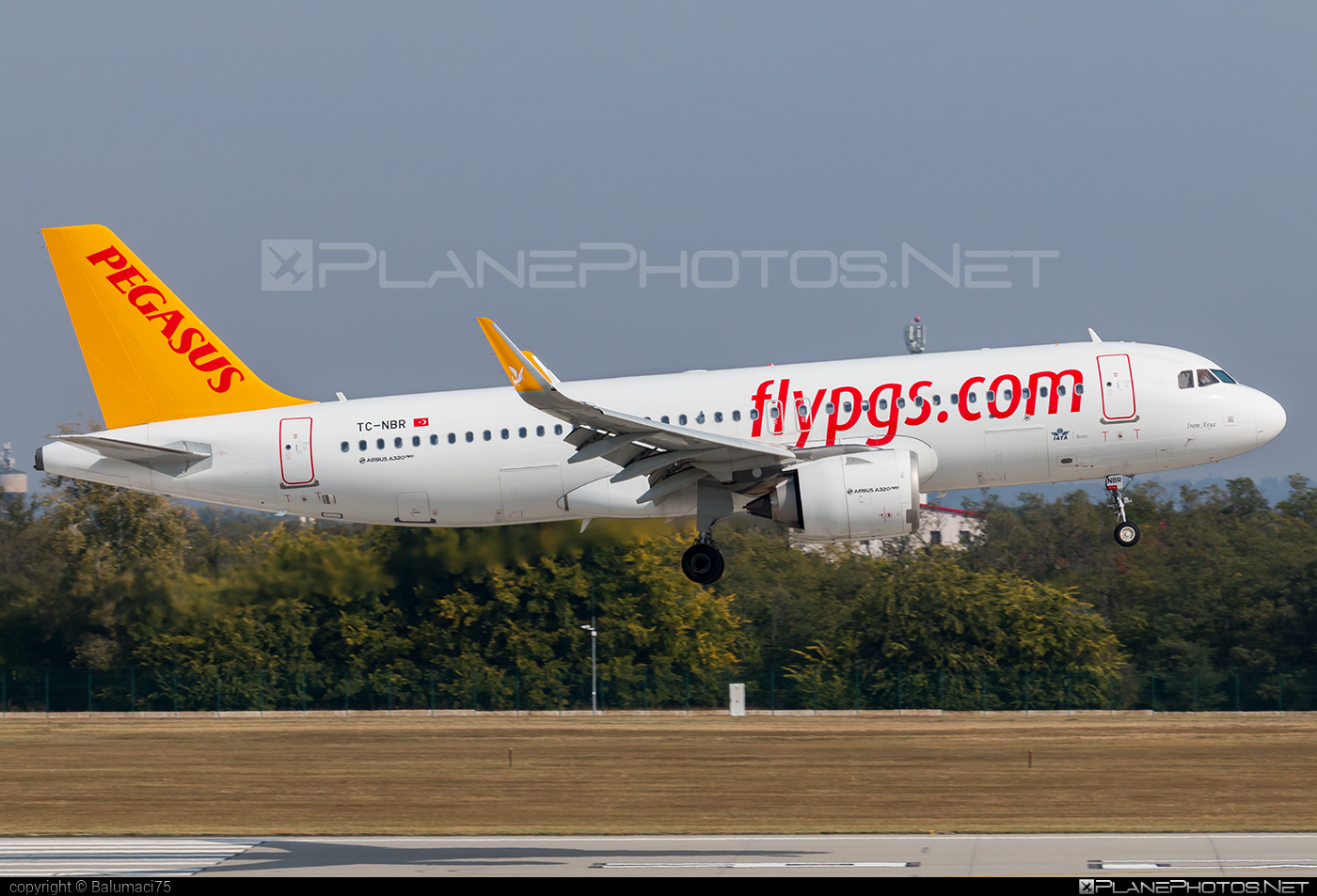 Airbus A320-251N - TC-NBR operated by Pegasus Airlines #a320 #a320family #a320neo #airbus #airbus320
