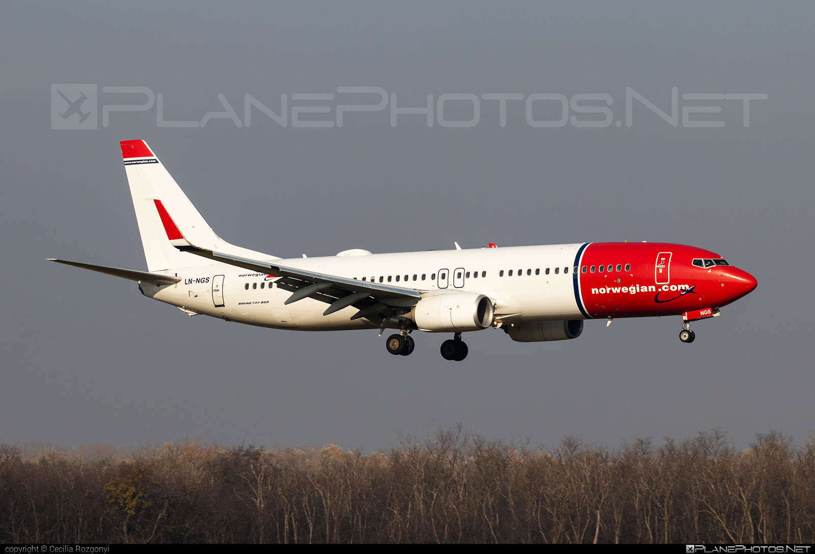 Boeing 737-800 - LN-NGS operated by Norwegian Air Shuttle #b737 #b737nextgen #b737ng #boeing #boeing737 #norwegian #norwegianair #norwegianairshuttle