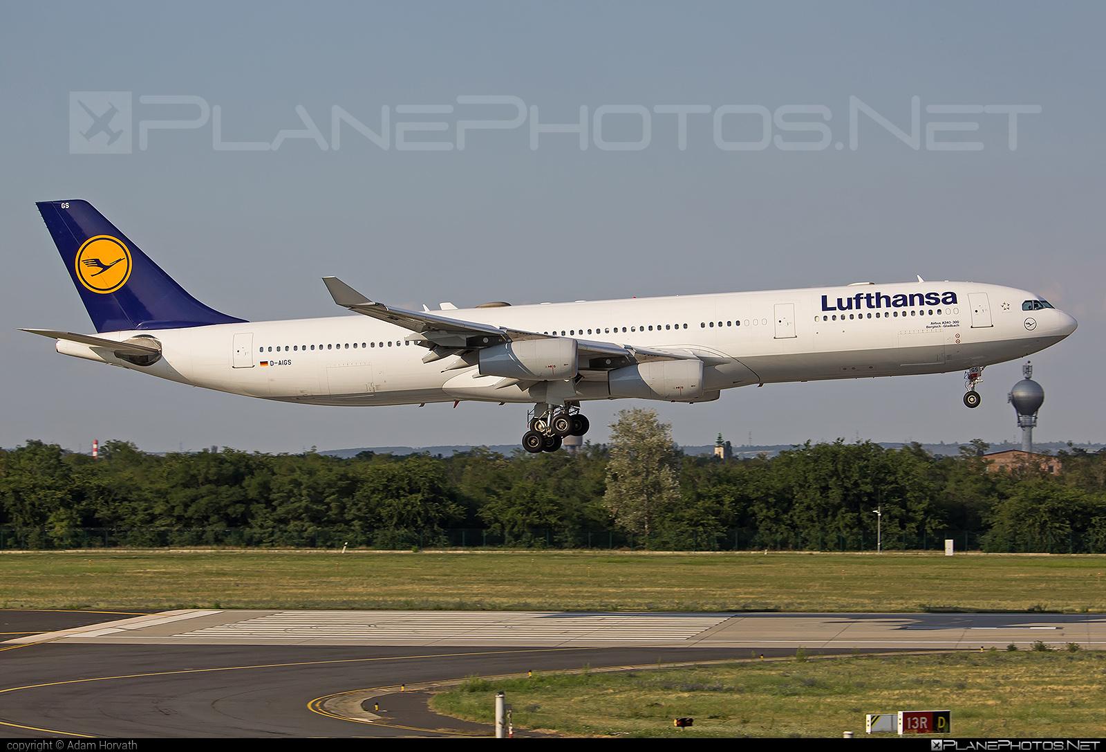 Airbus A340-313 - D-AIGS operated by Lufthansa #a340 #a340family #airbus #airbus340 #lufthansa