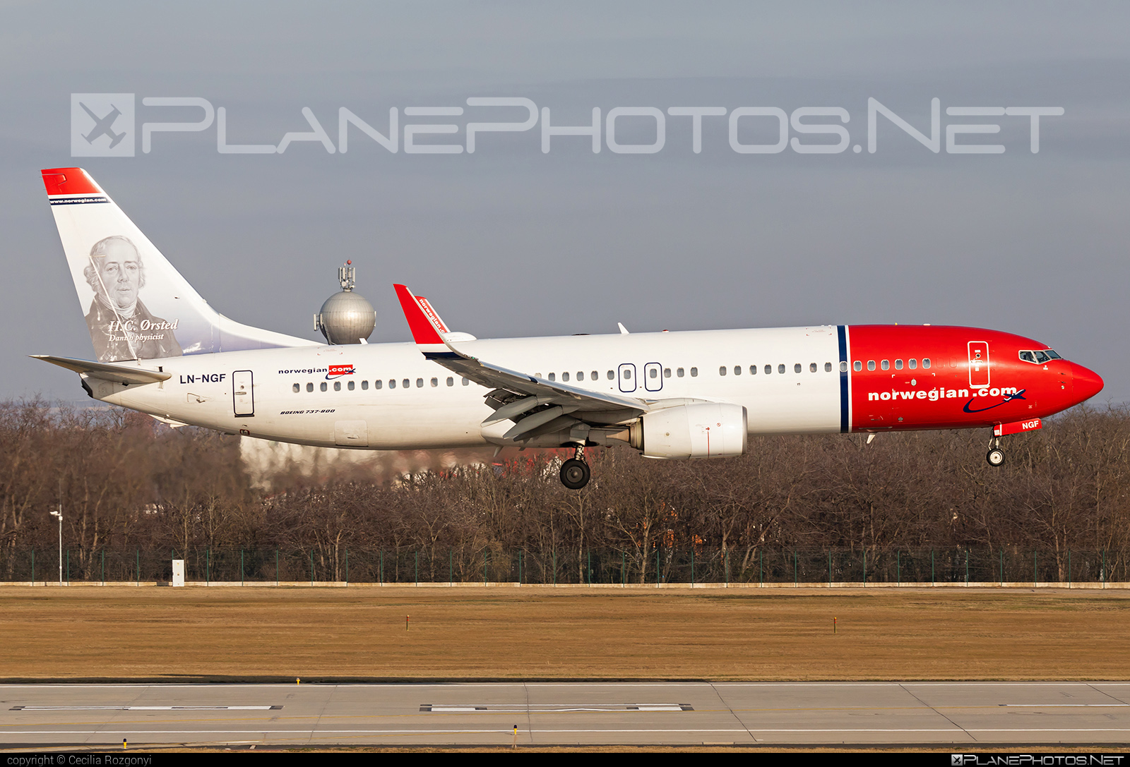 Boeing 737-800 - LN-NGF operated by Norwegian Air Shuttle #b737 #b737nextgen #b737ng #boeing #boeing737 #norwegian #norwegianair #norwegianairshuttle