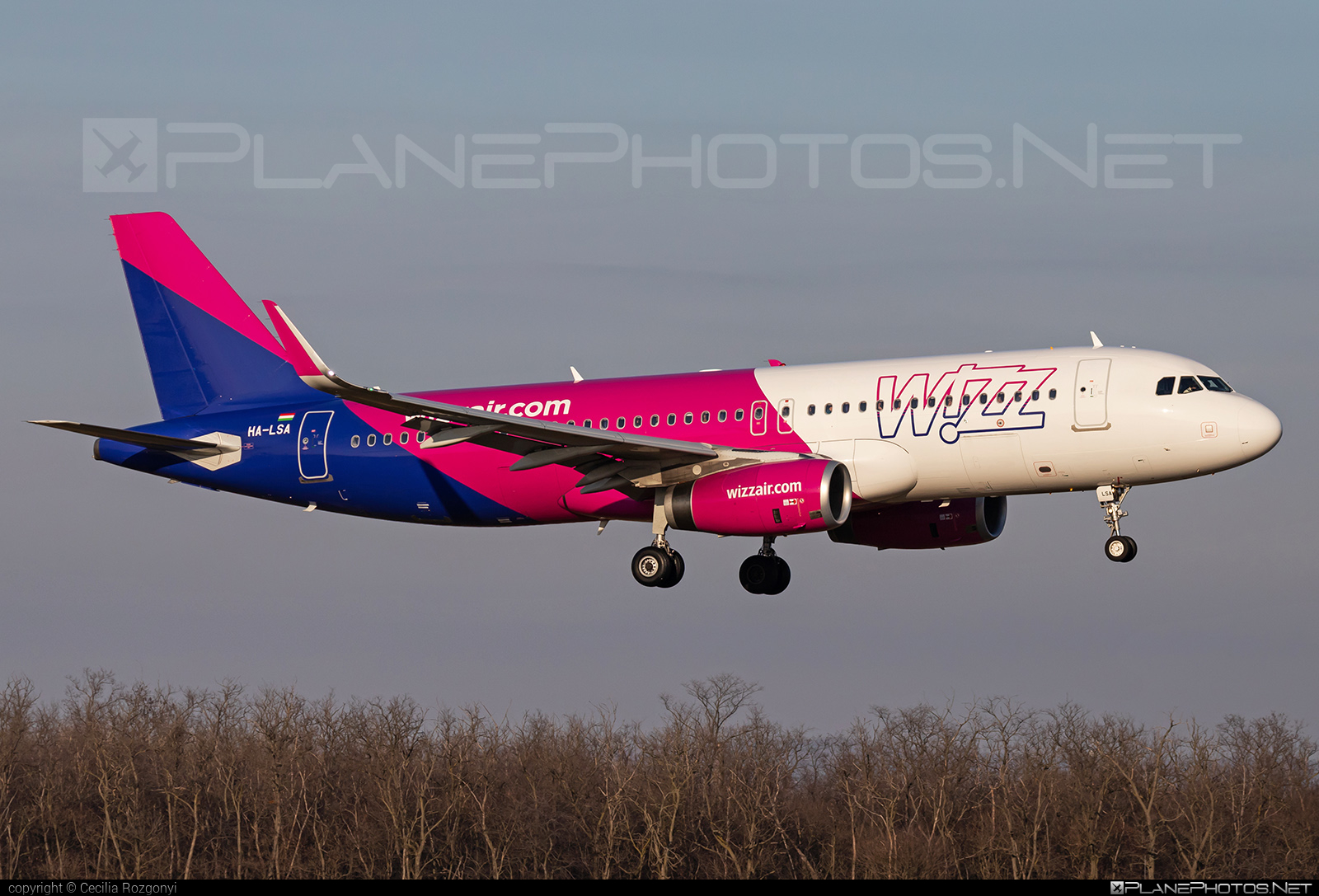 Airbus A320-232 - HA-LSA operated by Wizz Air #a320 #a320family #airbus #airbus320 #wizz #wizzair