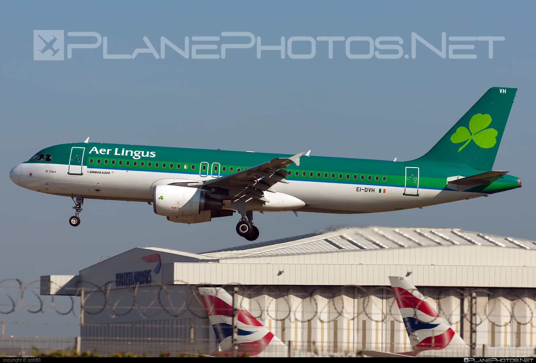 Airbus A320-214 - EI-DVH operated by Aer Lingus #a320 #a320family #aerlingus #airbus #airbus320