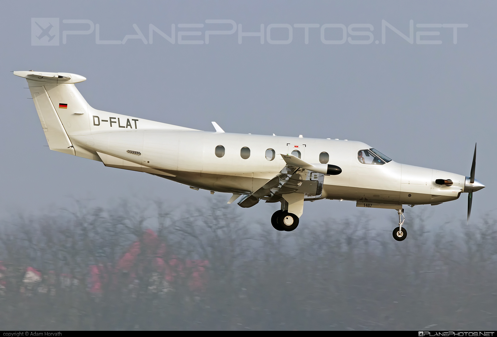 Pilatus PC-12/47 - D-FLAT operated by Private operator #pilatus
