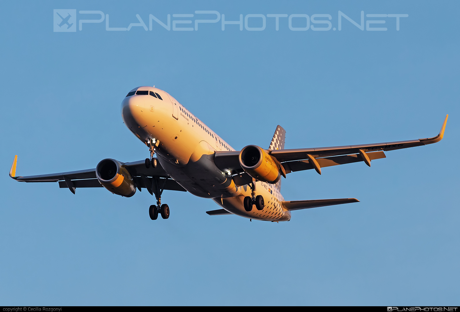 Airbus A320-232 - EC-MXG operated by Vueling Airlines #a320 #a320family #airbus #airbus320 #vueling #vuelingairlines