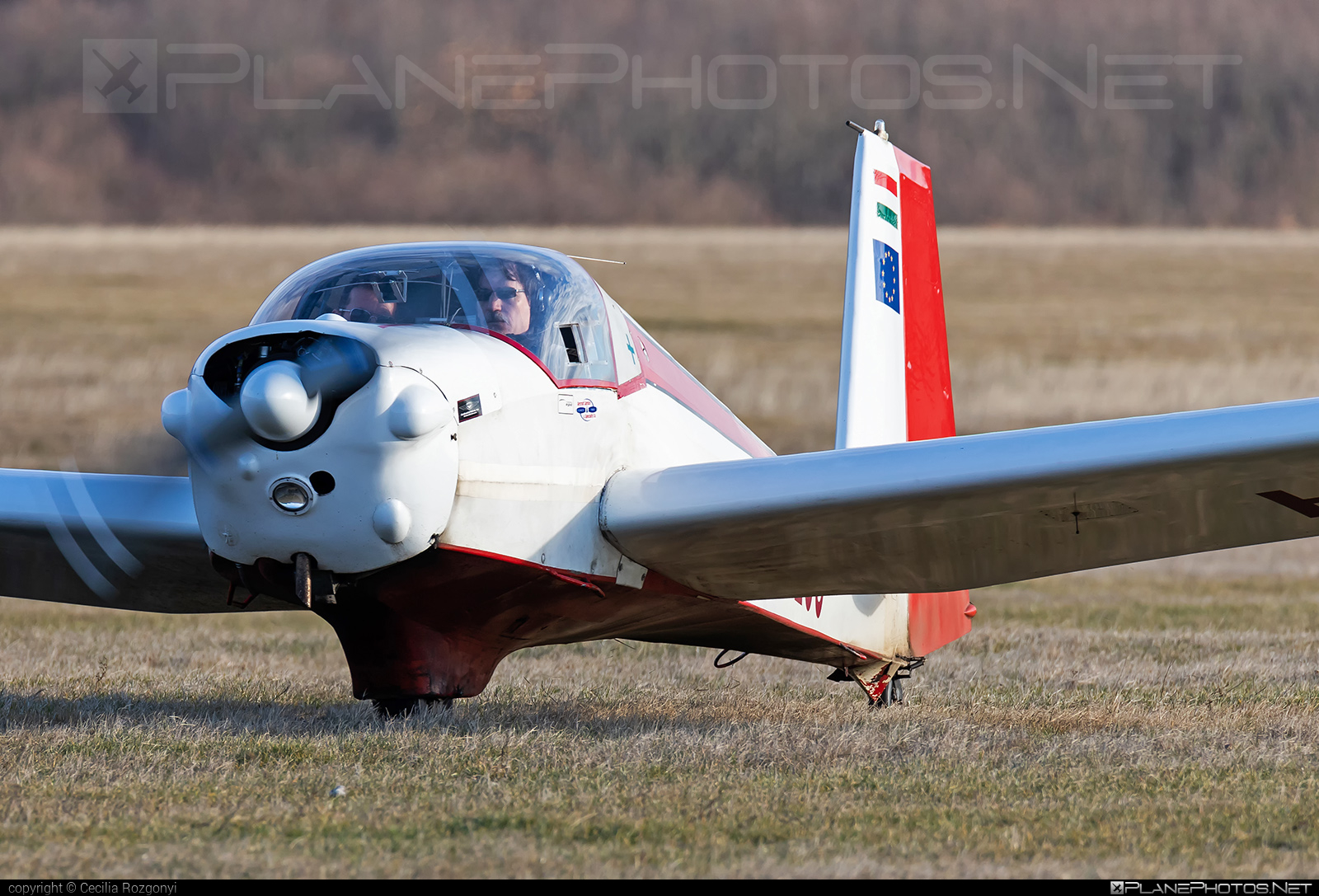 Scheibe SF-25C Falke - HA-1250 operated by Private operator #scheibe #scheibefalke #sf25 #sf25c