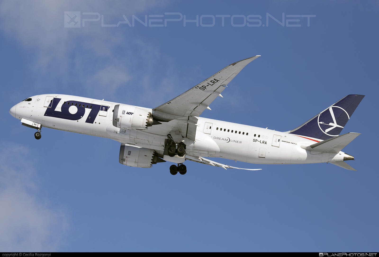 Boeing 787-8 Dreamliner - SP-LRA operated by LOT Polish Airlines #b787 #boeing #boeing787 #dreamliner #lot #lotpolishairlines