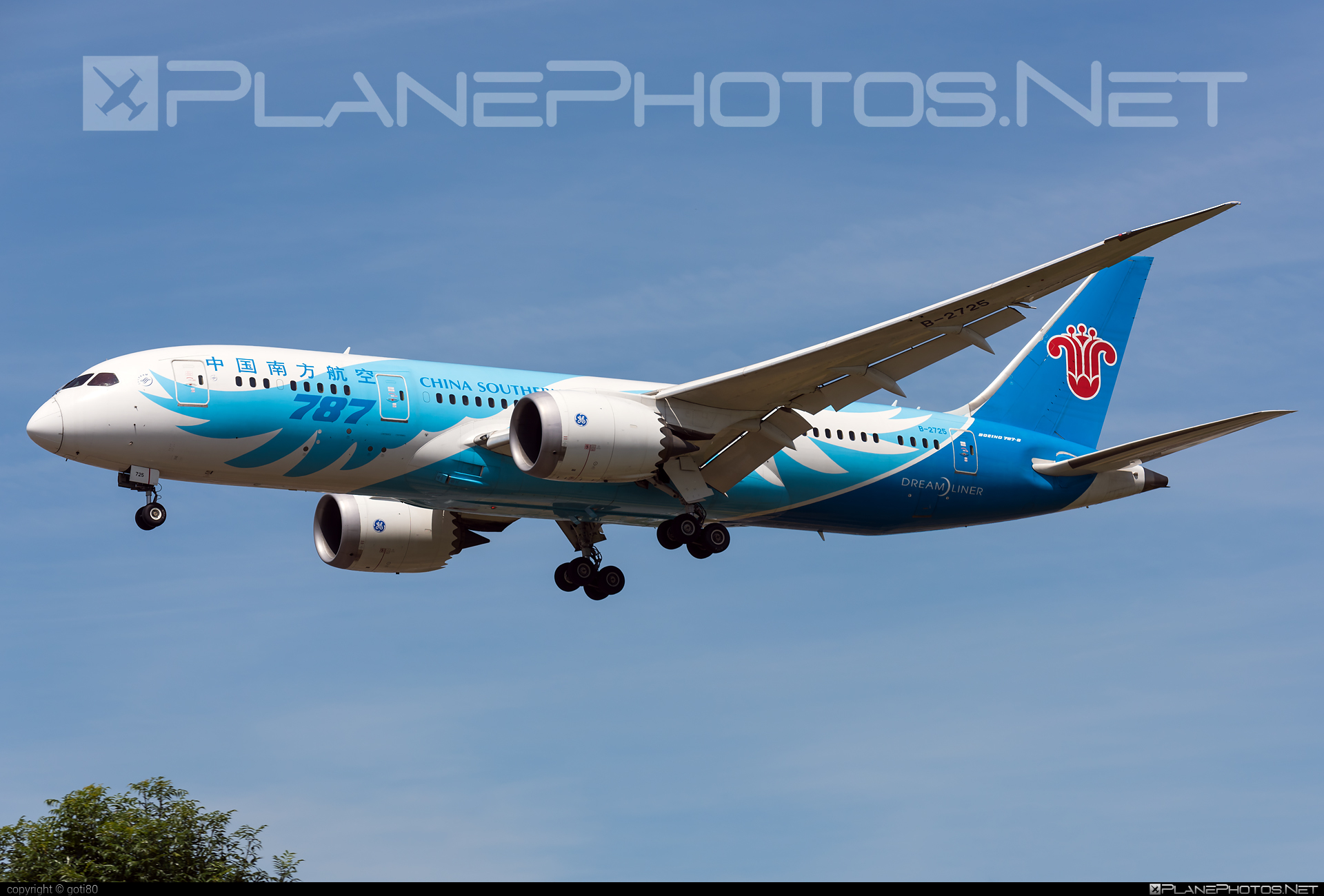 China Southern Airlines Boeing 787-8 Dreamliner - B-2725 #b787 #boeing #boeing787 #dreamliner