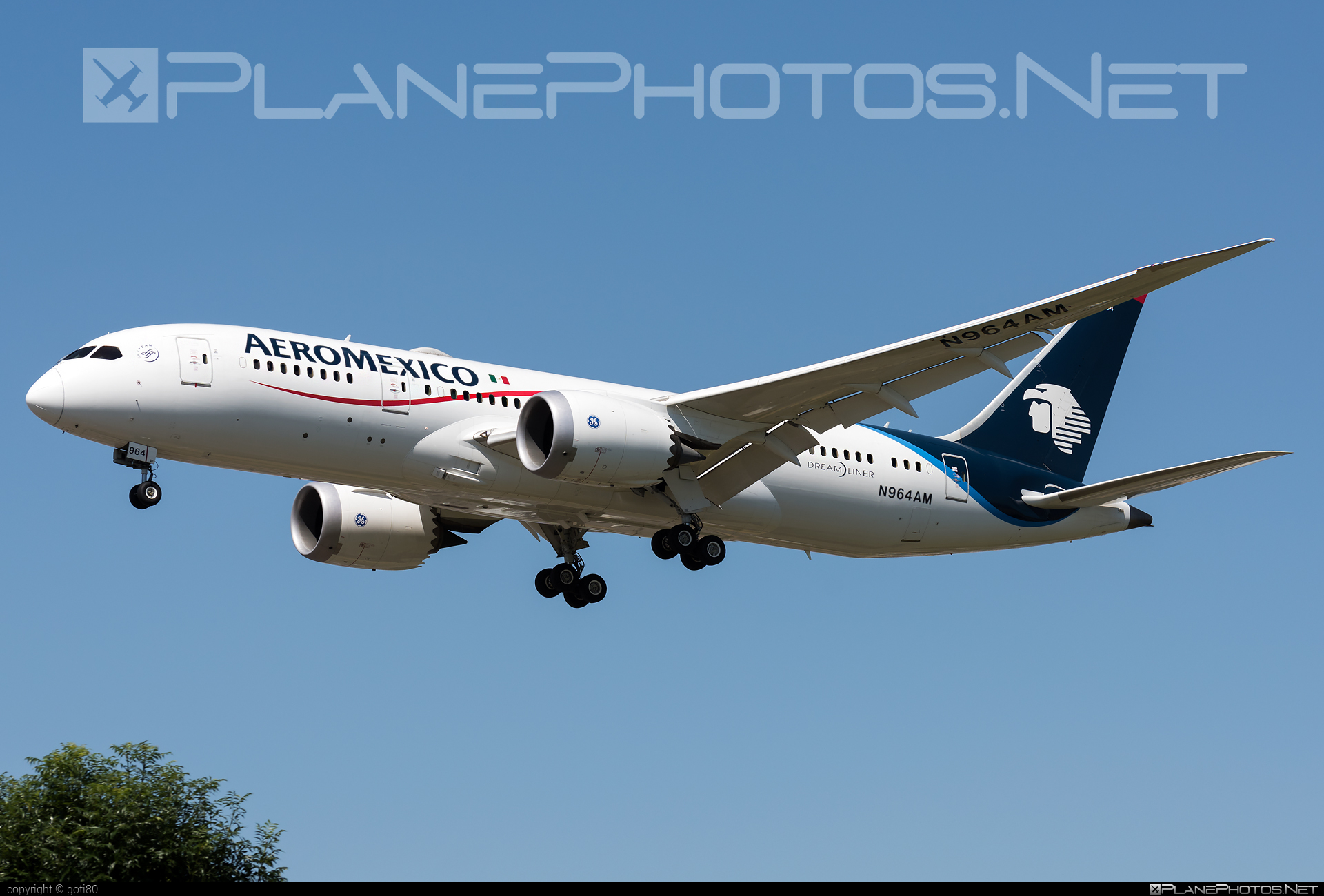 Boeing 787-8 Dreamliner - N964AM operated by Aeroméxico #b787 #boeing #boeing787 #dreamliner