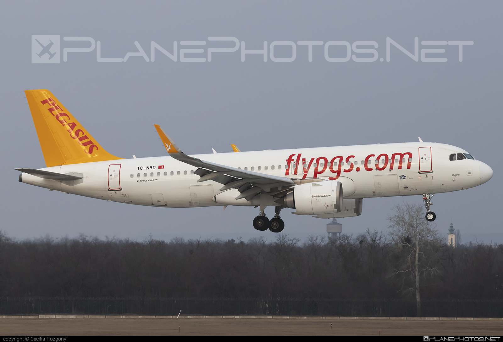 Pegasus Airlines Airbus A320-251N - TC-NBD #a320 #a320family #a320neo #airbus #airbus320