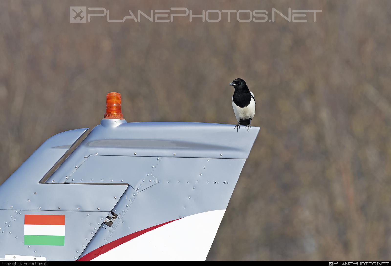 Cessna 310Q - HA-EAB operated by Multifly Kft. #cessna #multifly #multiflykft