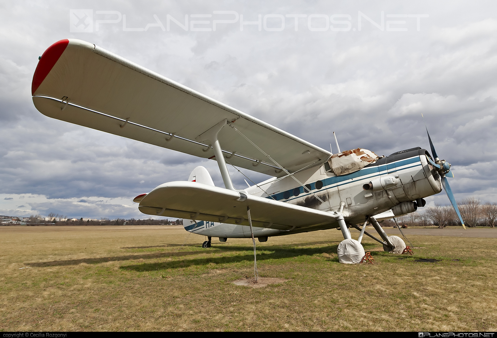 Antonov An-2TD - HA-ANV operated by Private operator #an2 #an2td #antonov #antonov2