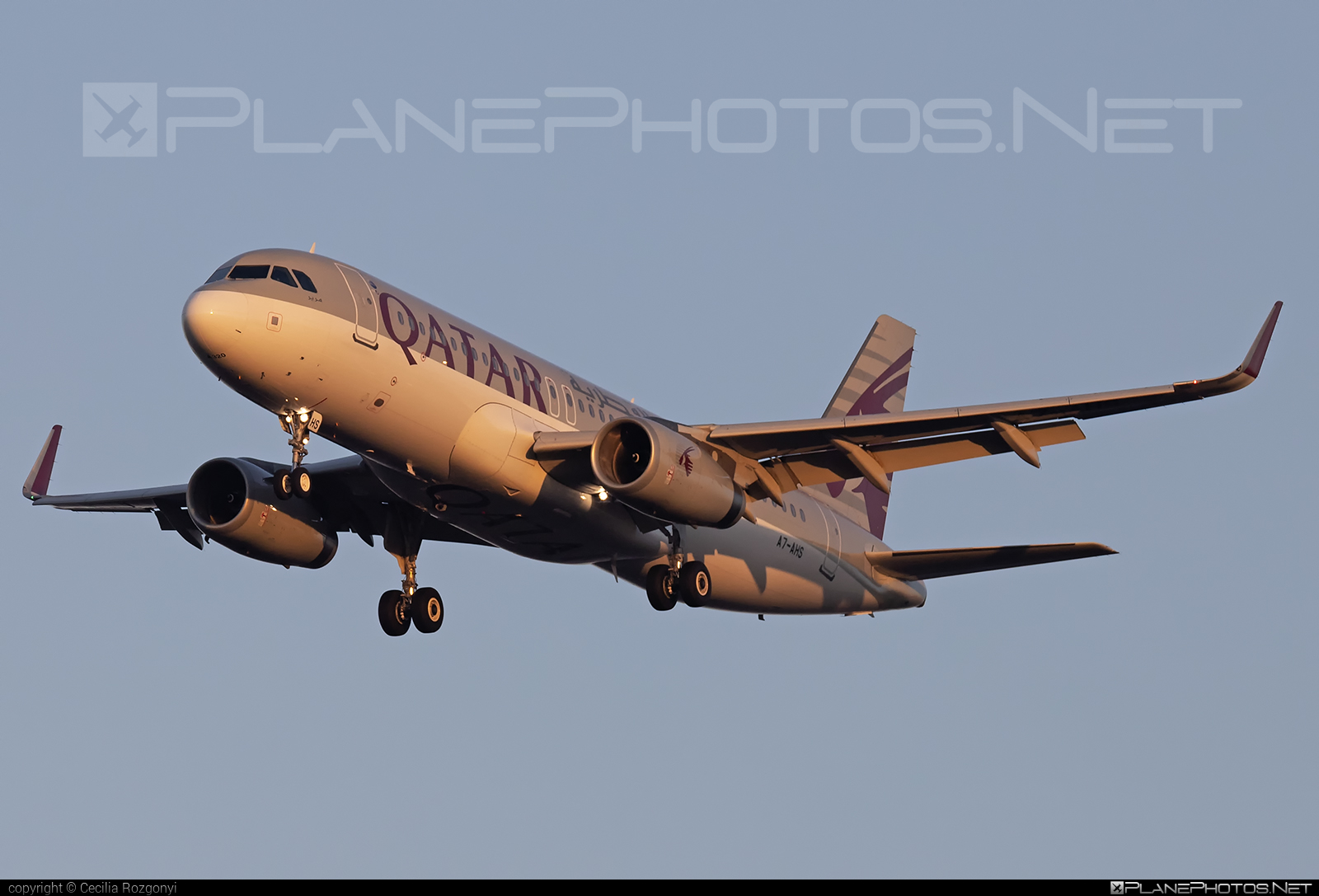 Airbus A320-232 - A7-AHS operated by Qatar Airways #a320 #a320family #airbus #airbus320 #qatarairways