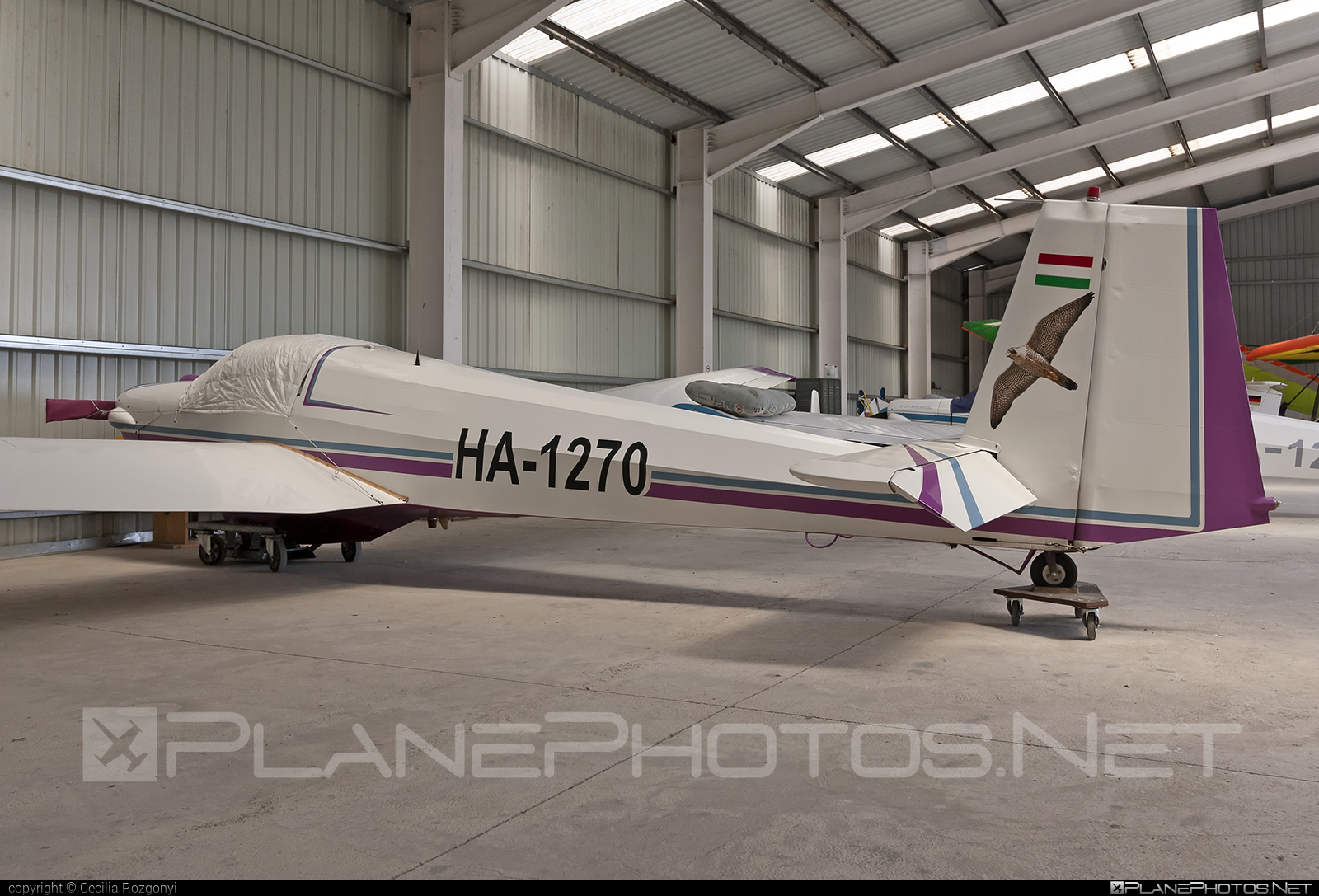 Scheibe SF-25C Falke - HA-1270 operated by Private operator #scheibe #scheibefalke #sf25 #sf25c