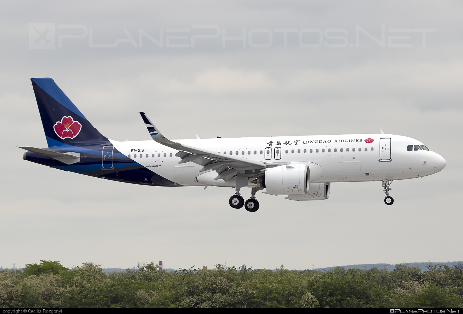 Qingdao Airlines Airbus A320-271N - EI-GIB #a320 #a320family #a320neo #airbus #airbus320 #qingdaoairlines