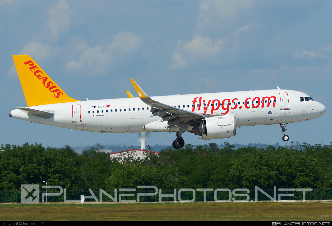 Airbus A320-251N - TC-NBH operated by Pegasus Airlines #a320 #a320family #a320neo #airbus #airbus320