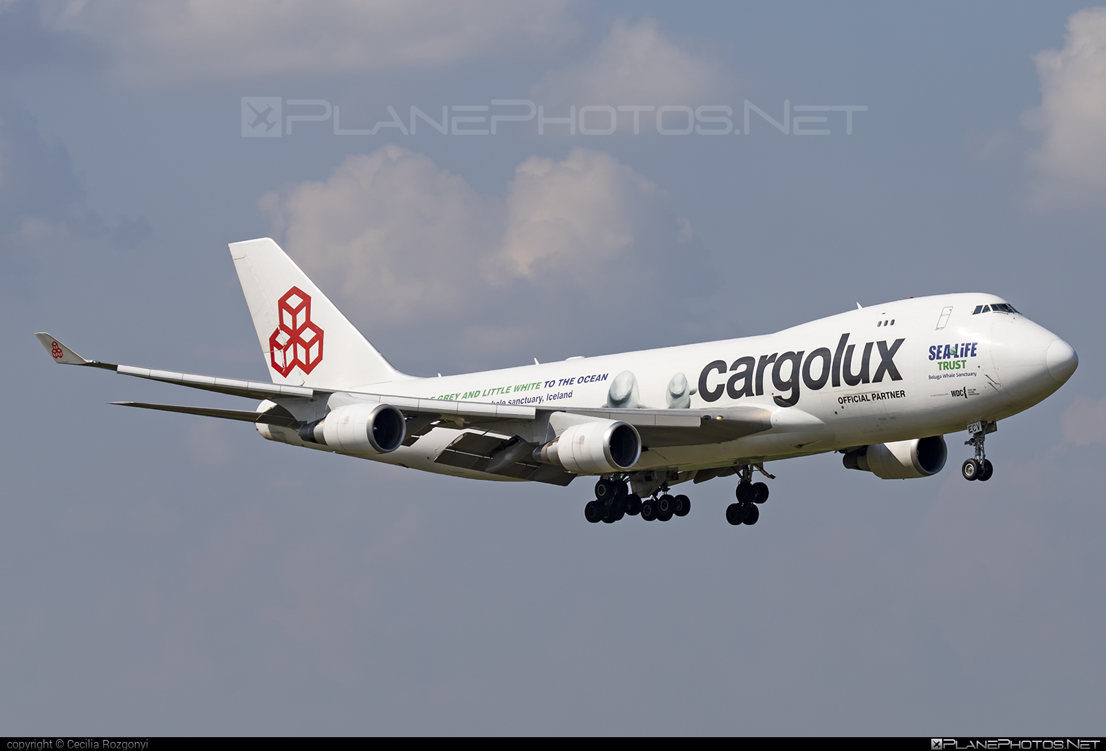 Boeing 747-400ER - LX-ECV operated by Cargolux Airlines International #b747 #boeing #boeing747 #cargolux #jumbo