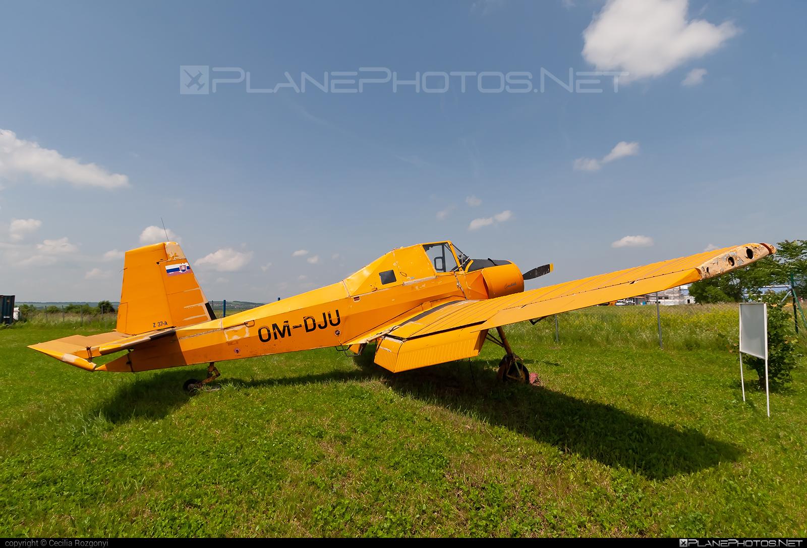 Zlin Z-37A Čmelák - OM-DJU operated by AERO SLOVAKIA #aeroslovakia #cmelak #z37 #z37a #zlin #zlin37 #zlin37cmelak