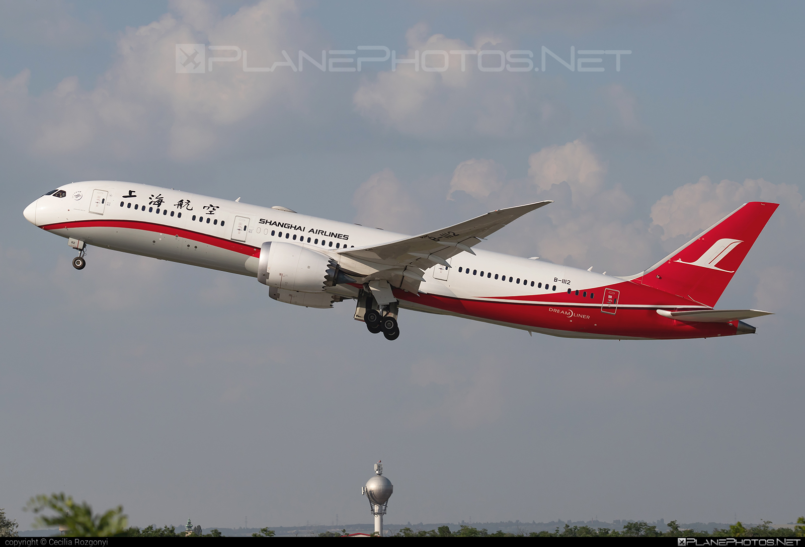 Boeing 787-9 Dreamliner - B-1112 operated by Shanghai Airlines #b787 #boeing #boeing787 #dreamliner