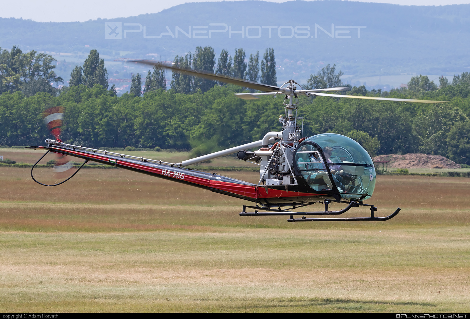 Hiller UH-12D - HA-MIG operated by Fly-Coop #hiller #hiller12d #hillerraven #hilleruh12d #uh12d