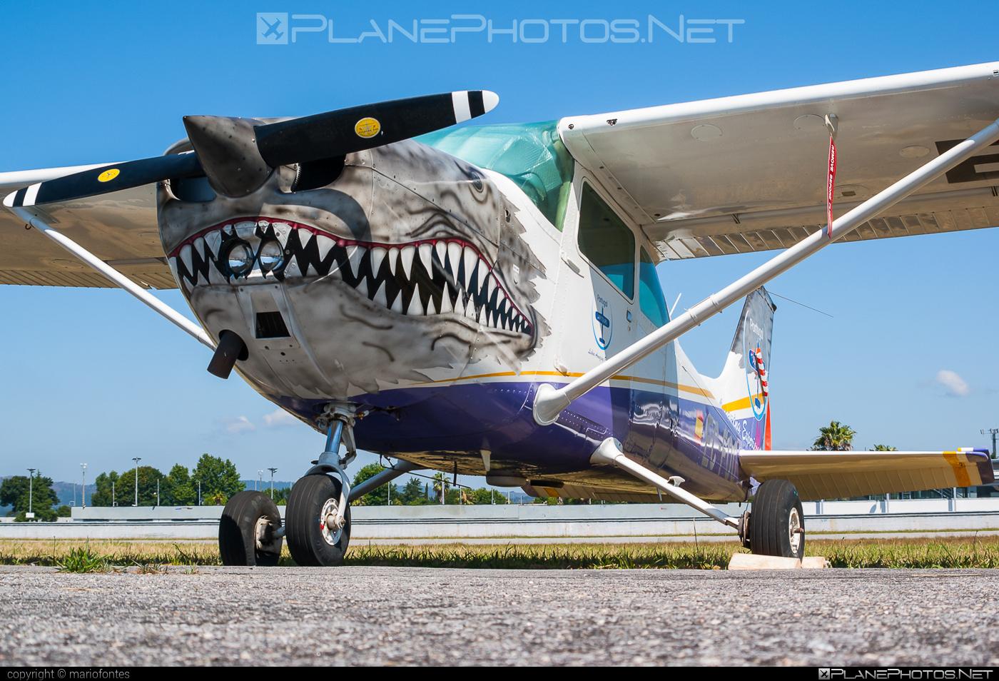 Cessna 172N Skyhawk II - EC-FOO operated by Private operator #cessna #cessna172 #cessna172n #cessna172nskyhawk #cessna172skyhawk #cessnaskyhawk