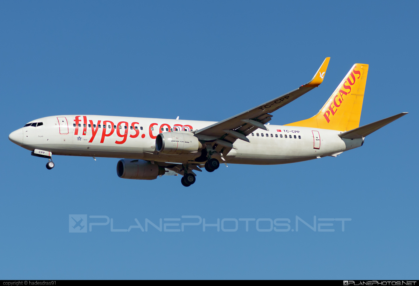 Boeing 737-800 - TC-CPP operated by Pegasus Airlines #b737 #b737nextgen #b737ng #boeing #boeing737