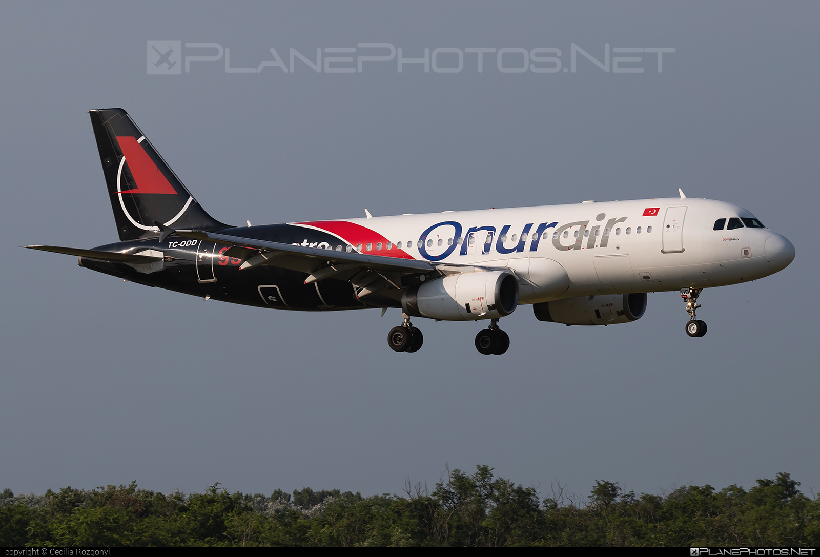 Airbus A320-232 - TC-ODD operated by Onur Air #a320 #a320family #airbus #airbus320
