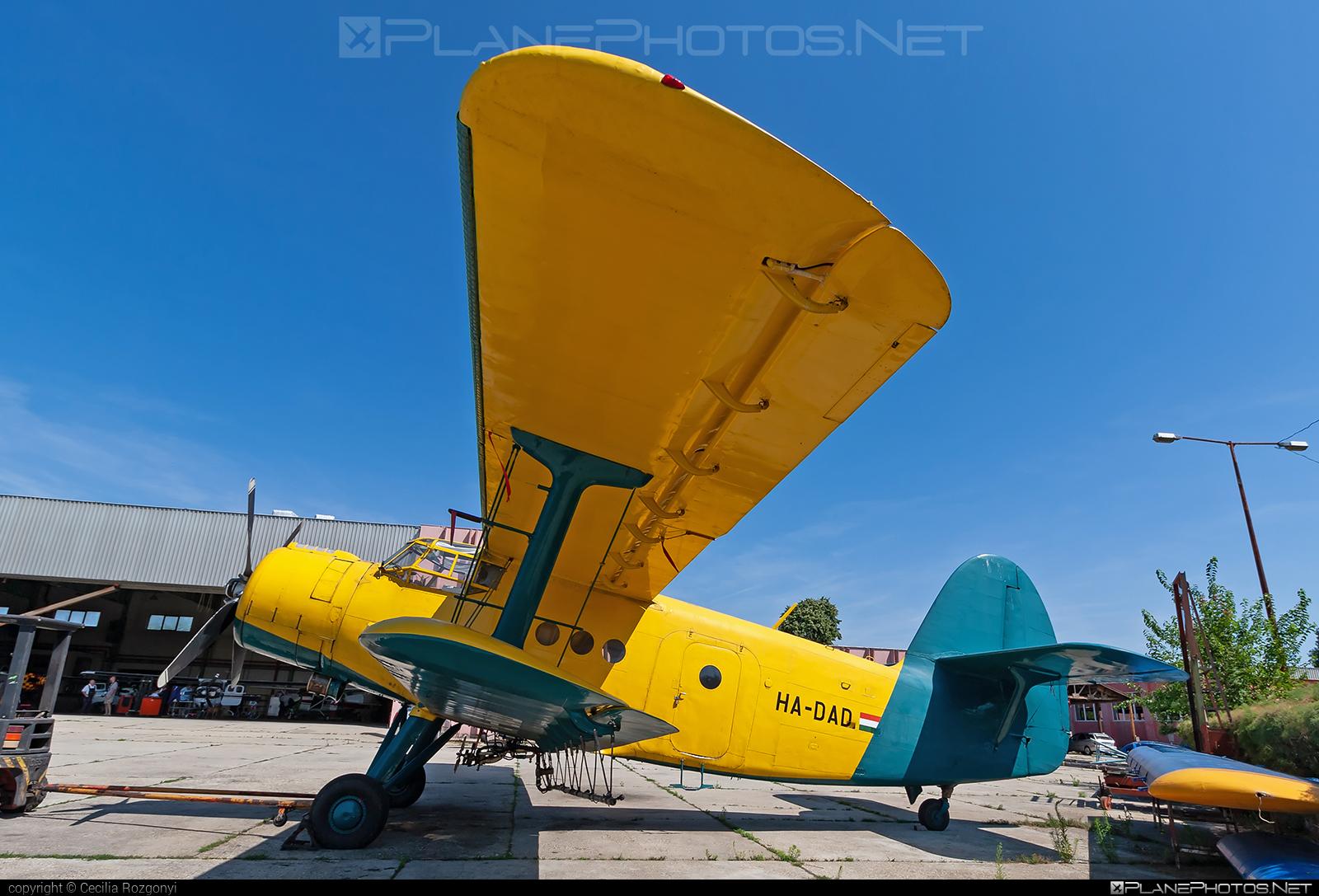 PZL-Mielec An-2R - HA-DAD operated by Private operator #an2 #an2r #antonov2 #pzl #pzlmielec