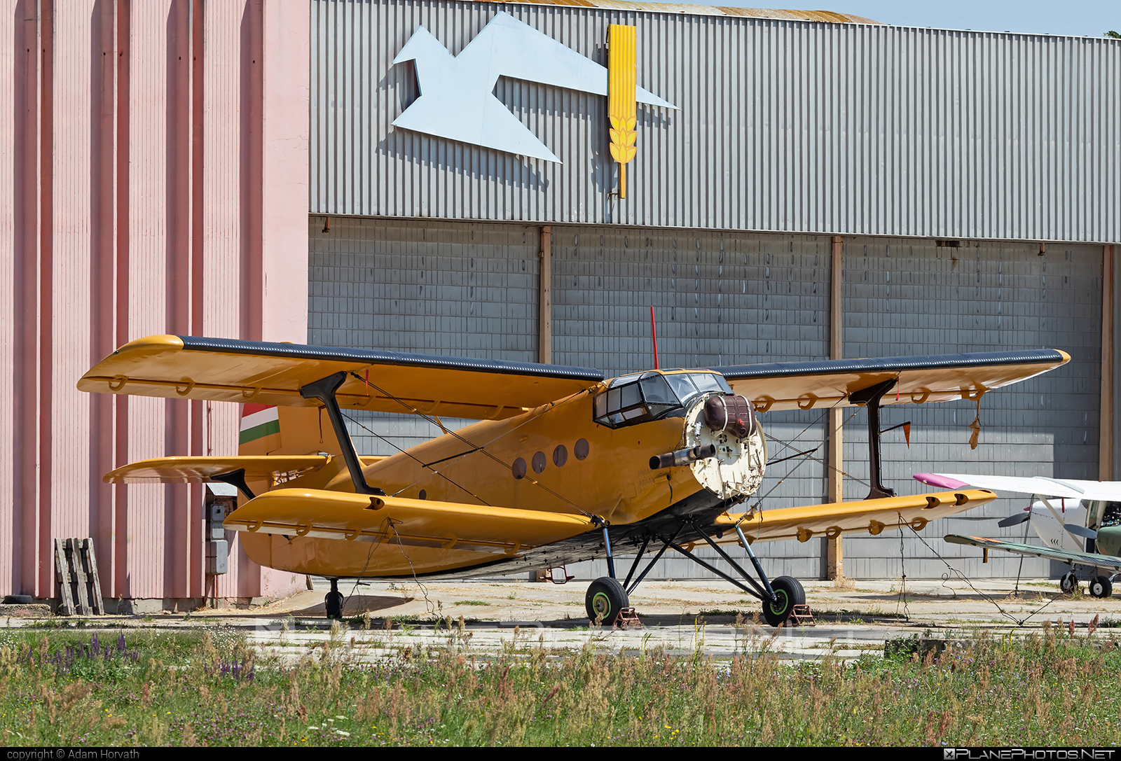 PZL-Mielec An-2R - HA-MBE operated by Private operator #an2 #an2r #antonov2 #pzl #pzlmielec