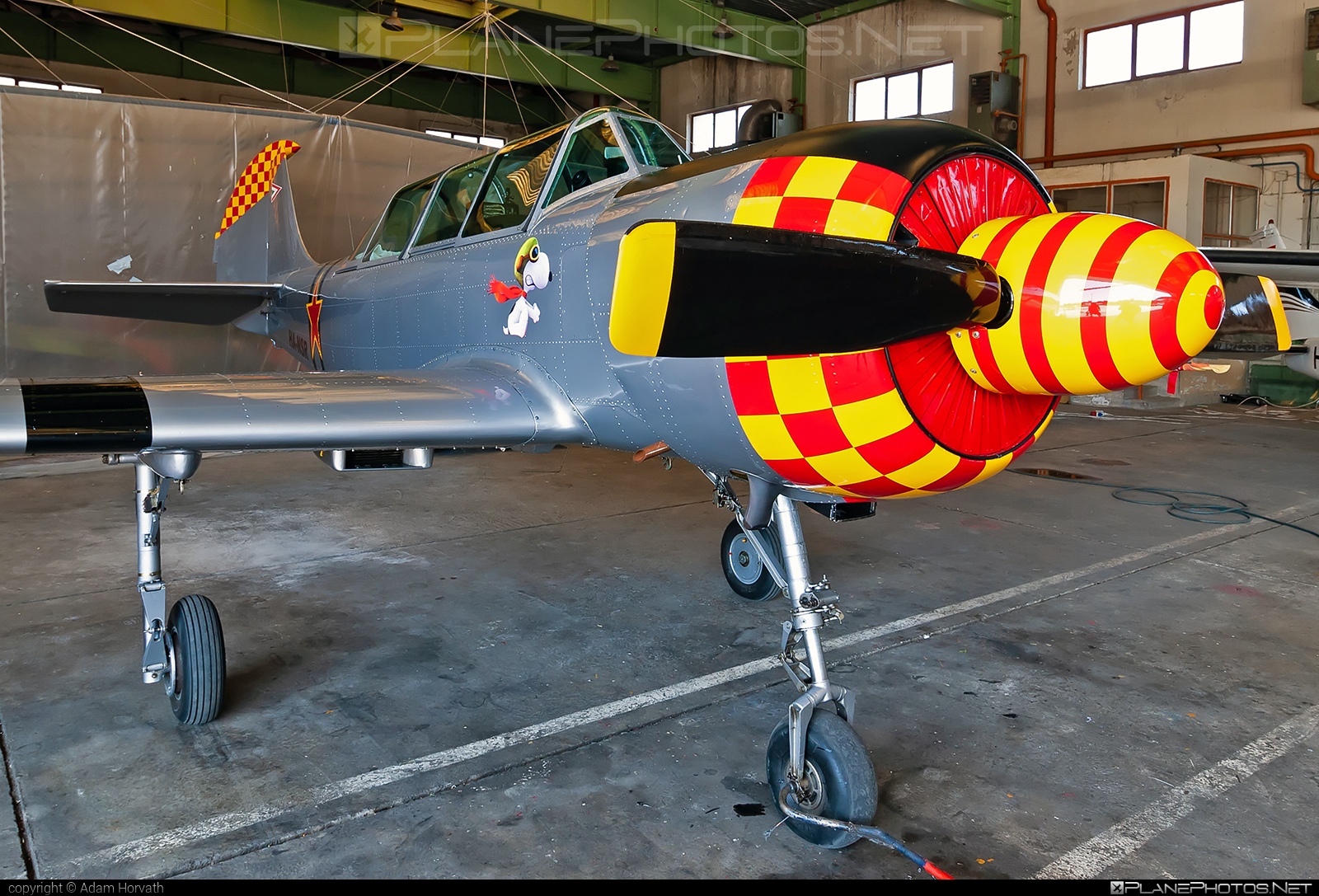 Aerostar Iak-52 - HA-NSR operated by Private operator #iak52 #yak52