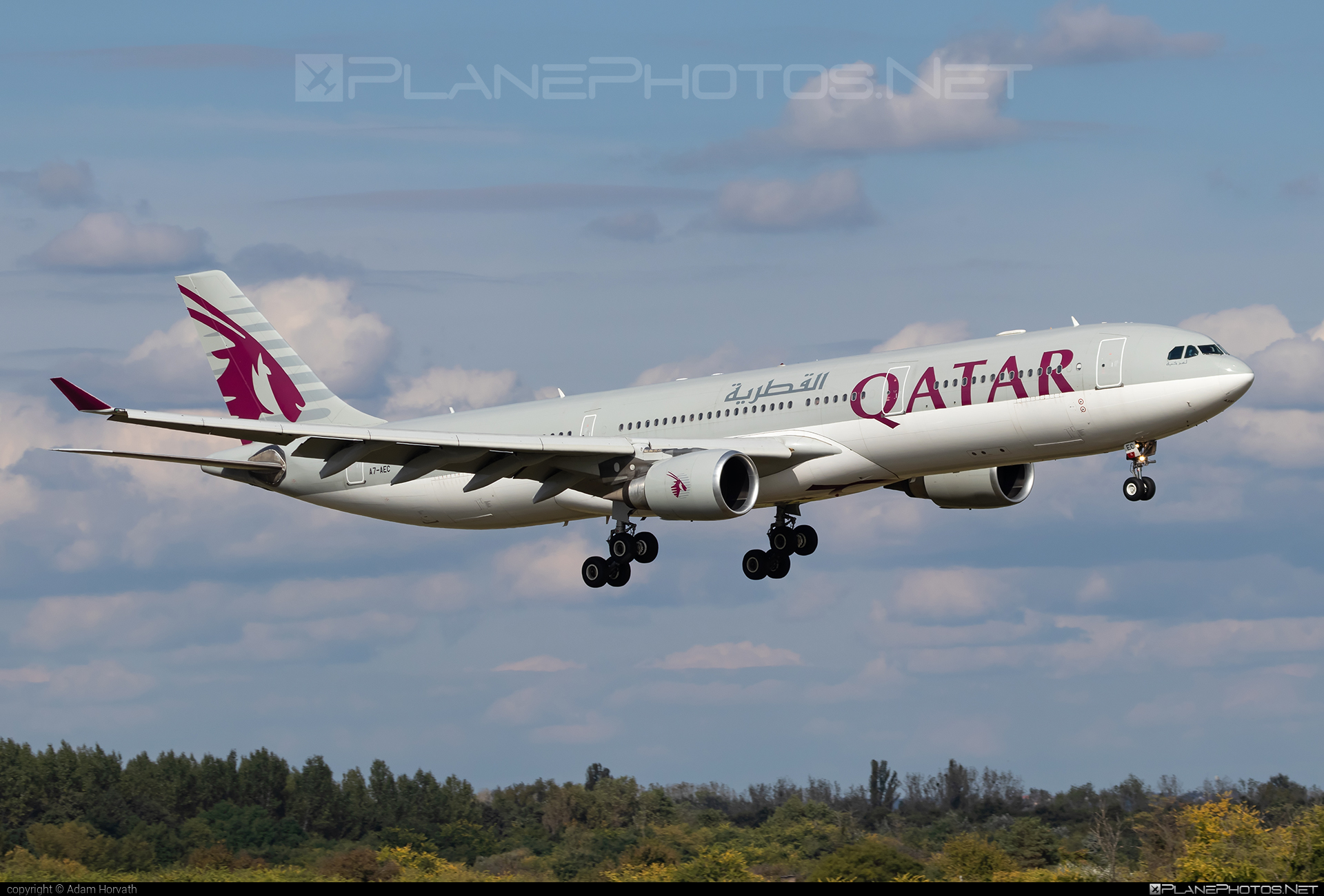 Airbus A330-302 - A7-AEC operated by Qatar Airways #a330 #a330family #airbus #airbus330 #qatarairways