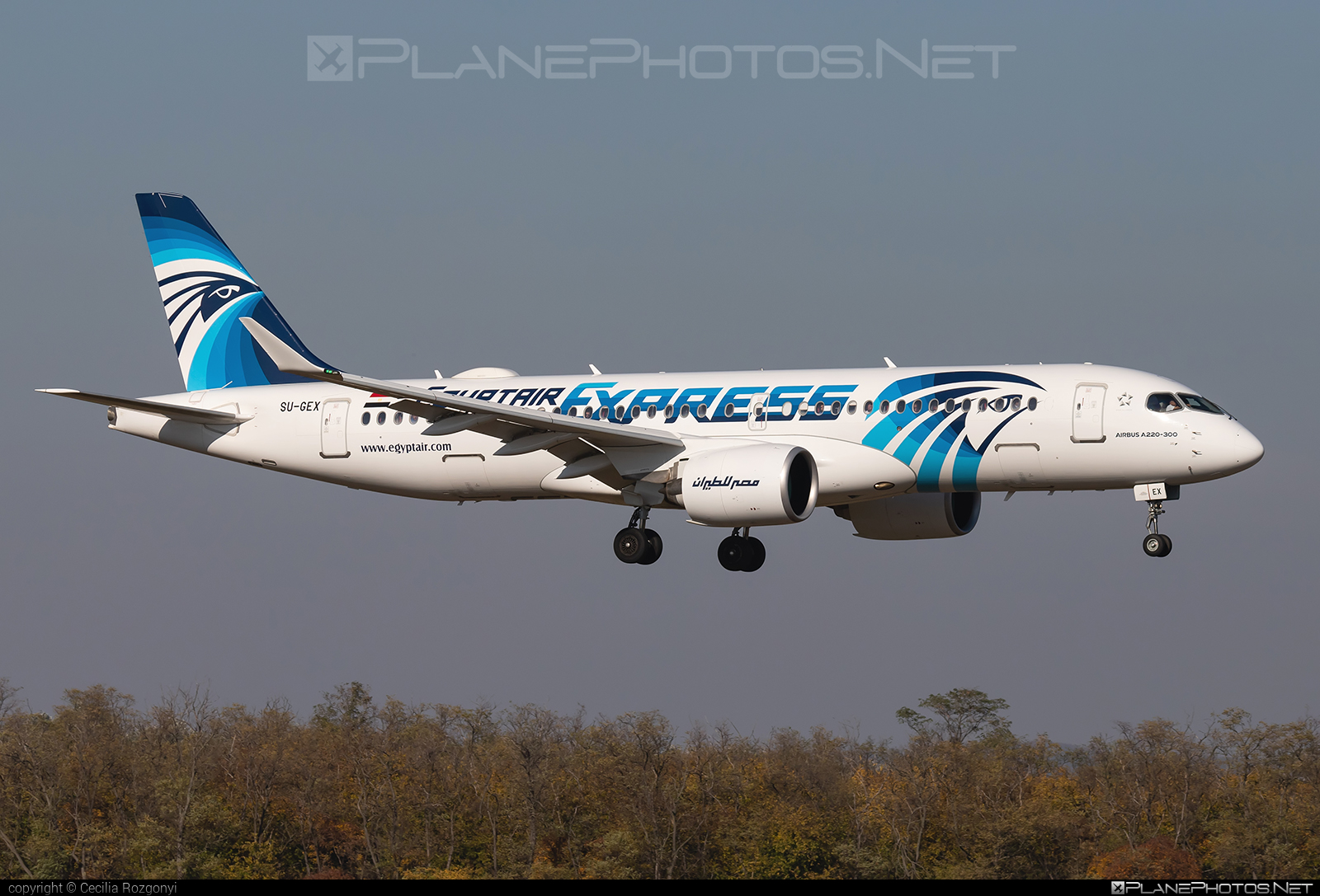 Airbus A220-300 - SU-GEX operated by EgyptAir Express #a220300 #a220family #airbus #cs300 #cseries #cseries300