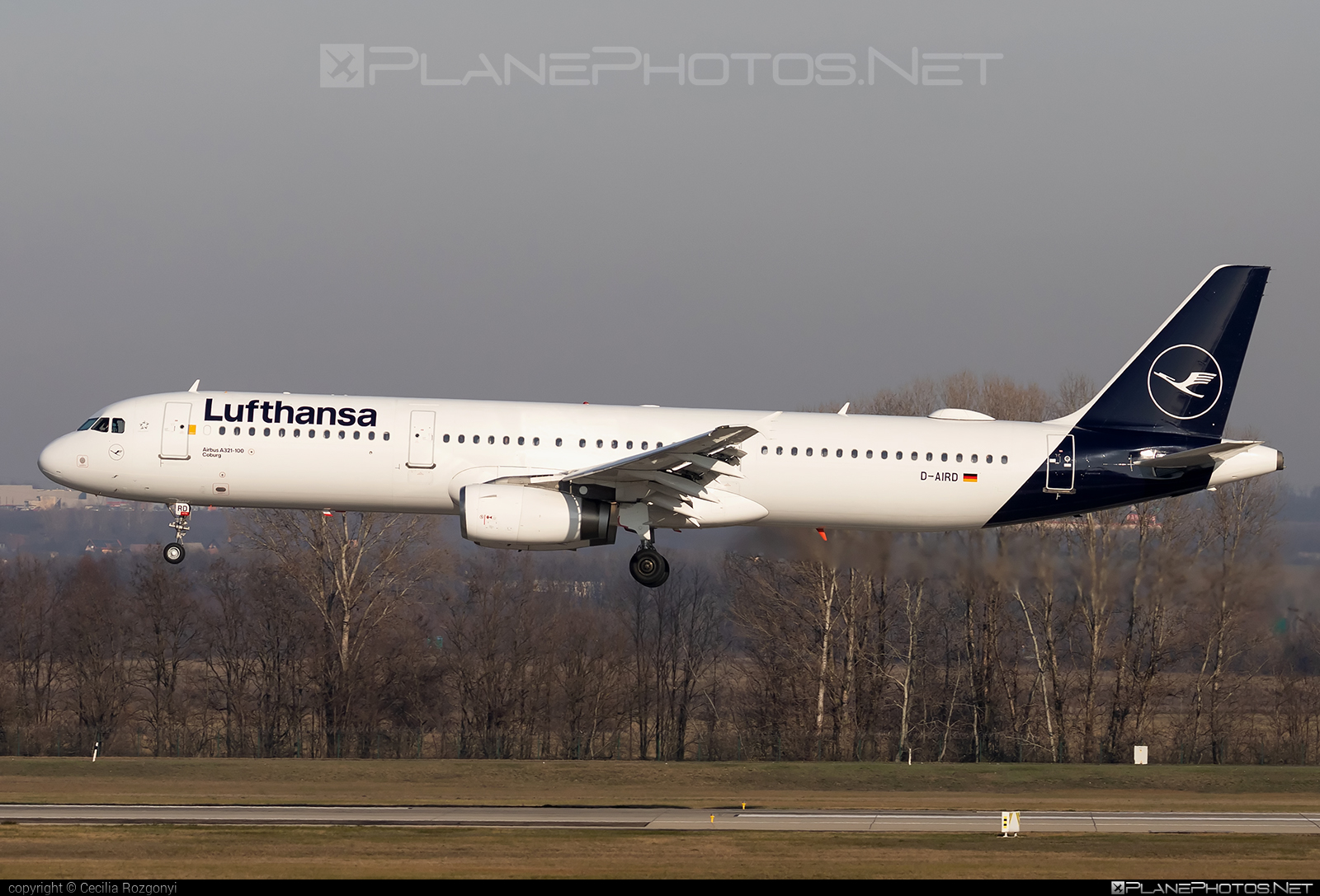 Airbus A321-131 - D-AIRD operated by Lufthansa #a320family #a321 #airbus #airbus321 #lufthansa