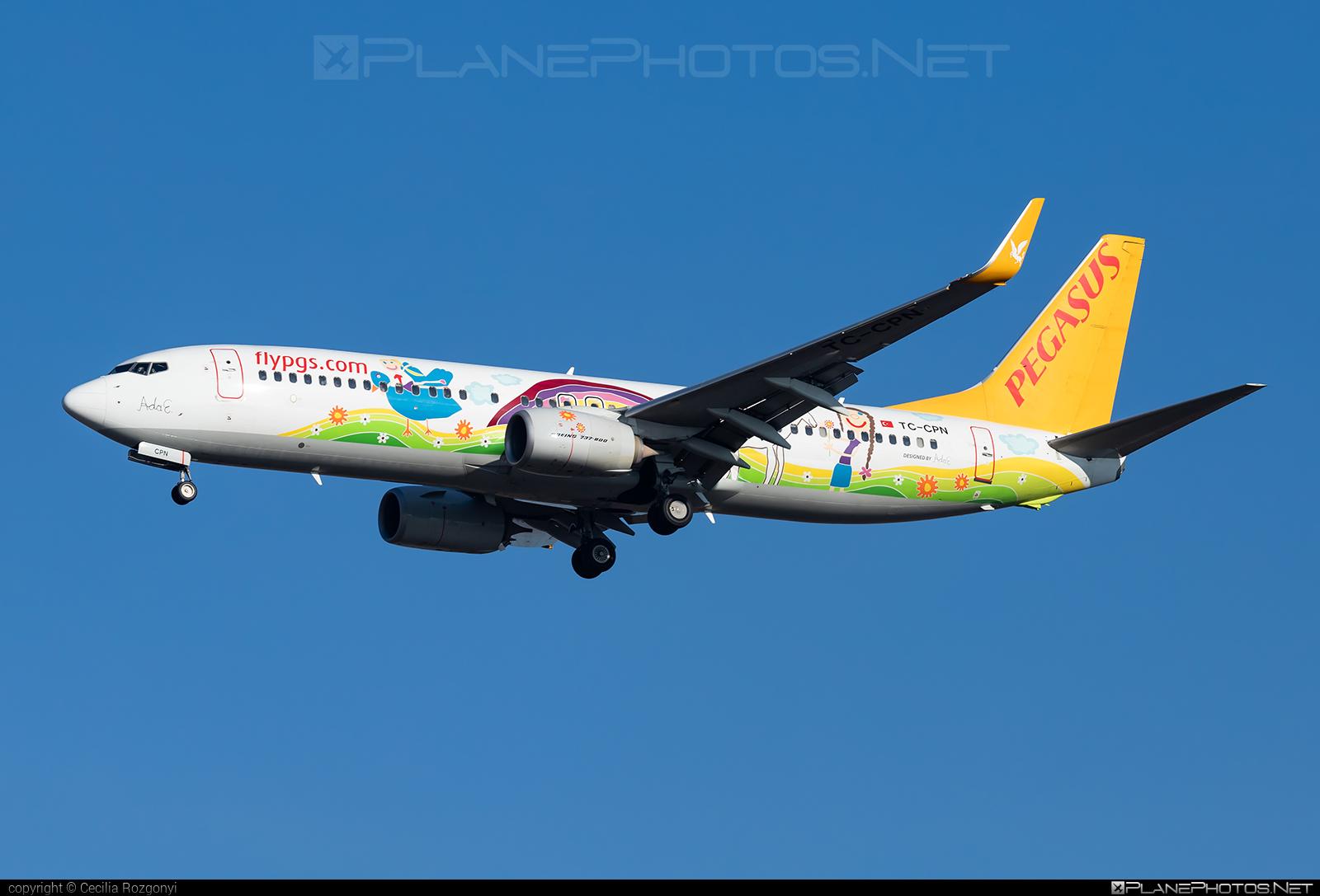 Boeing 737-800 - TC-CPN operated by Pegasus Airlines #b737 #b737nextgen #b737ng #boeing #boeing737