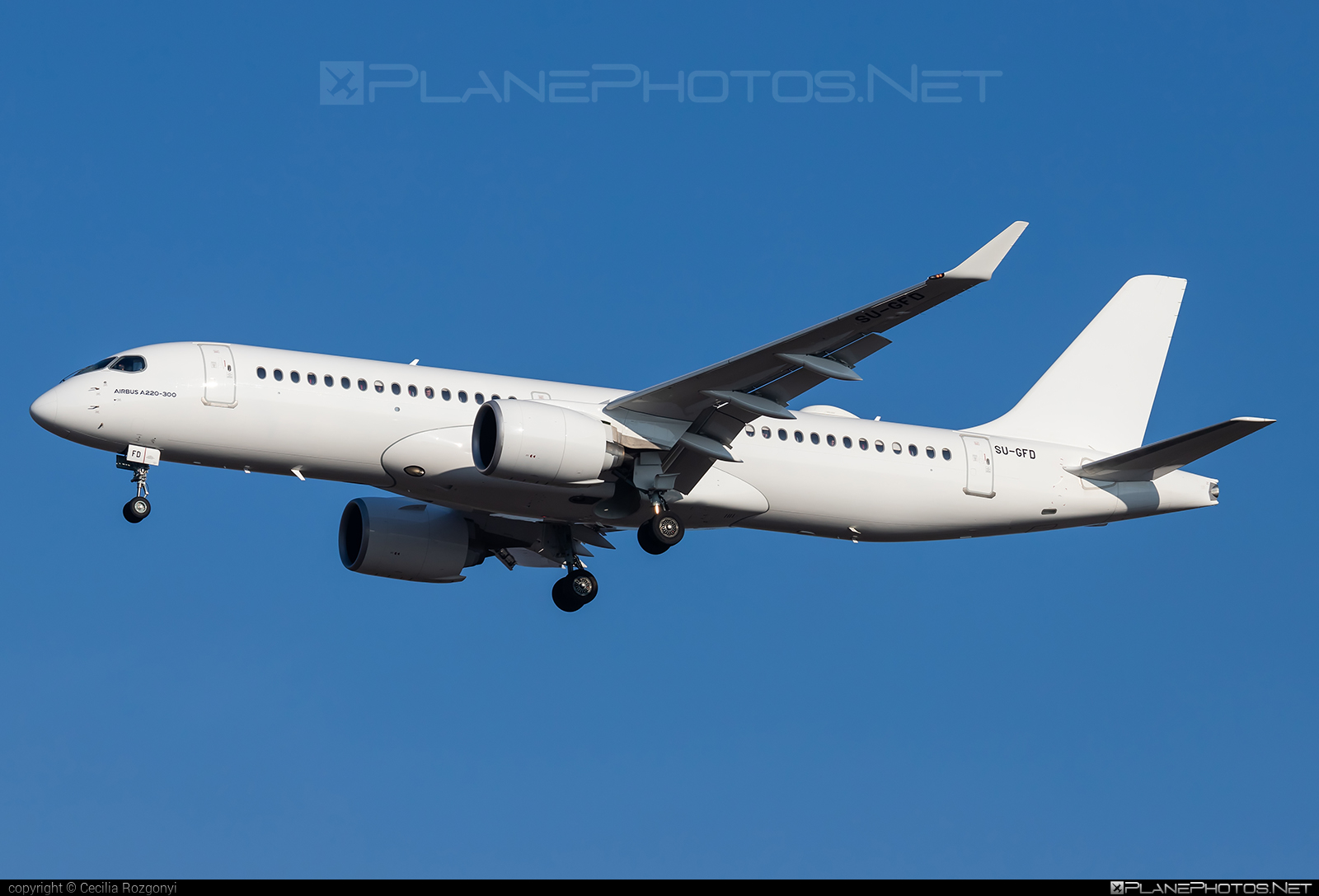 Airbus A220-300 - SU-GFD operated by EgyptAir Express #a220300 #a220family #airbus #cs300 #cseries #cseries300
