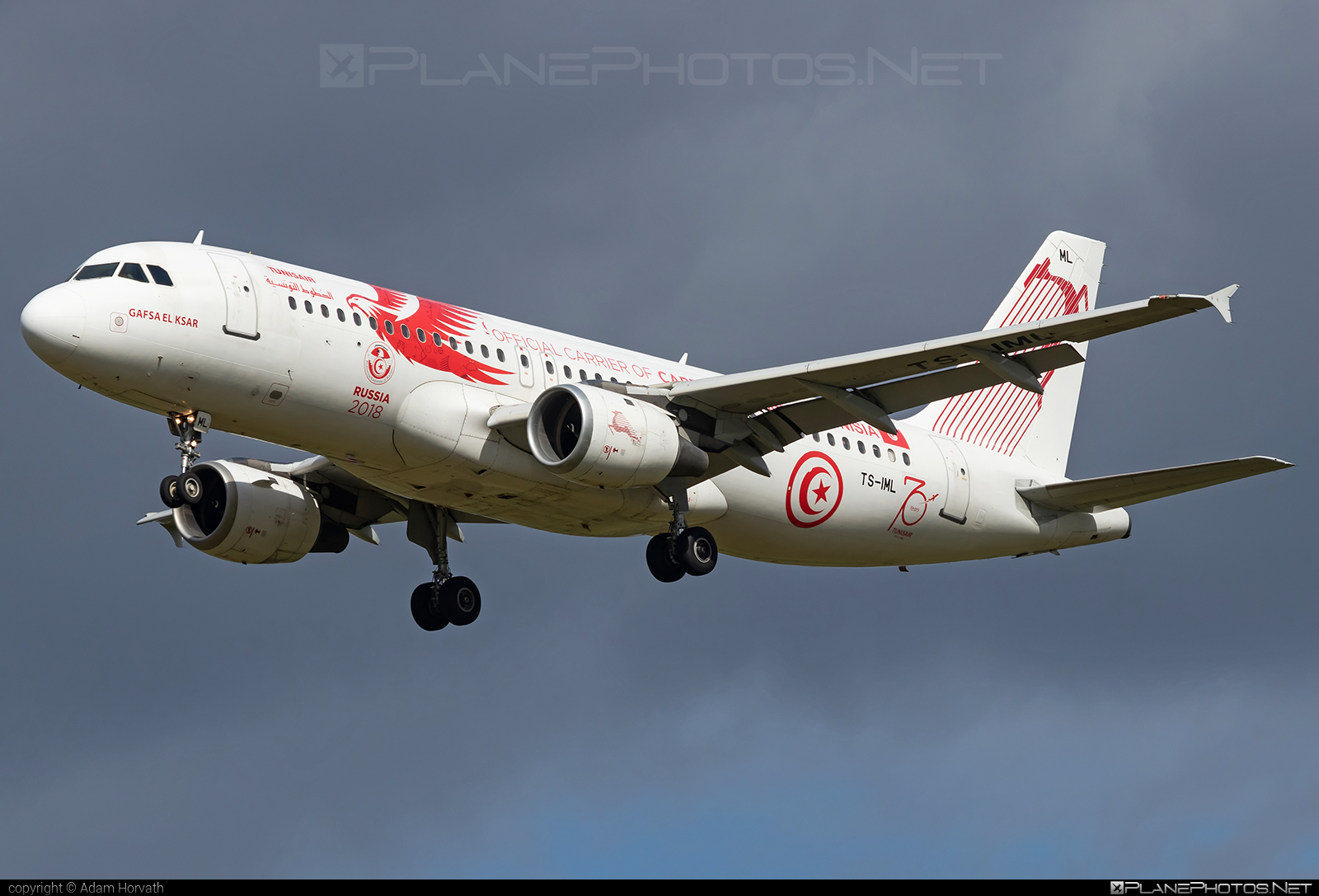 Airbus A320-211 - TS-IML operated by Tunisair #a320 #a320family #airbus #airbus320 #tunisair