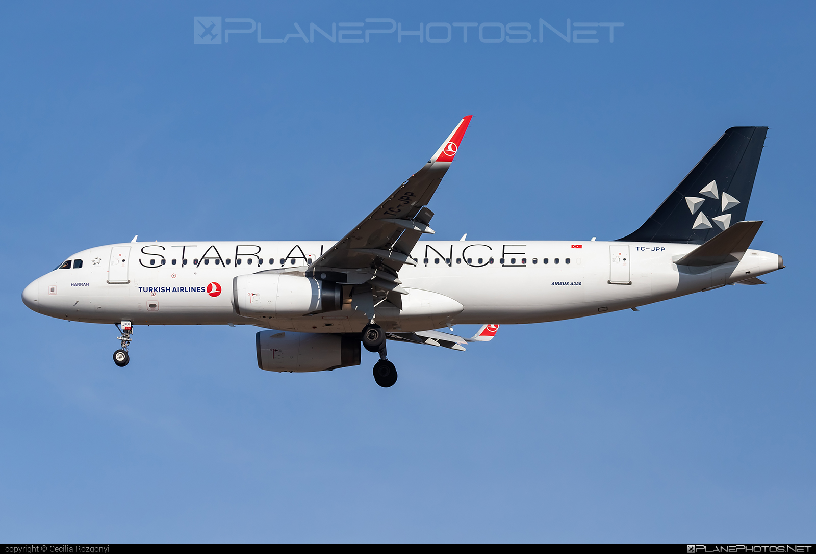 Airbus A320-232 - TC-JPP operated by Turkish Airlines #a320 #a320family #airbus #airbus320 #staralliance #turkishairlines
