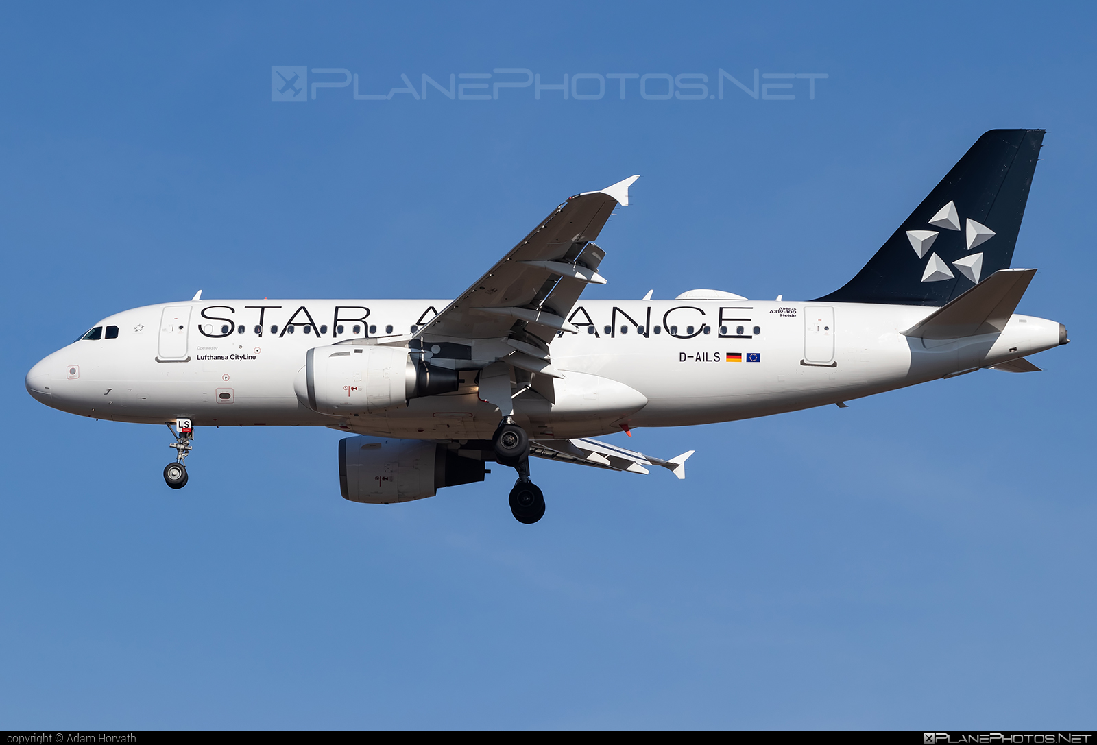 Airbus A319-114 - D-AILS operated by Lufthansa #a319 #a320family #airbus #airbus319 #lufthansa