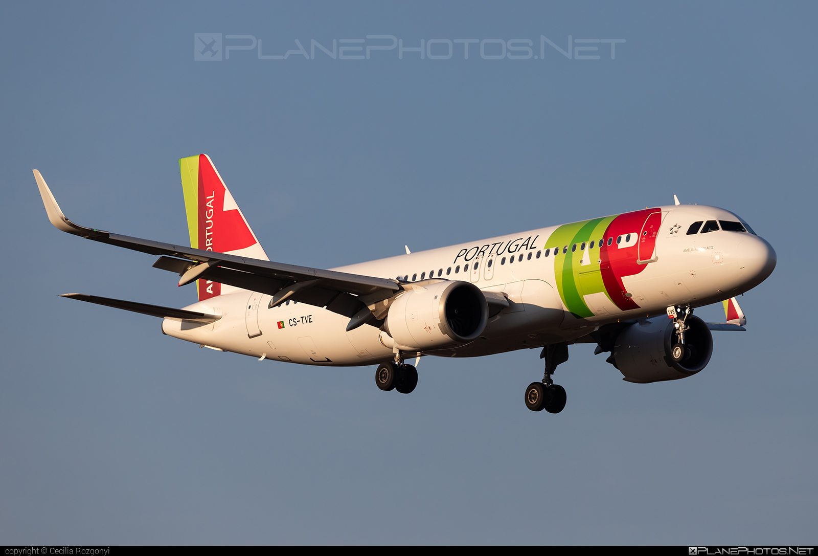 Airbus A320-251N - CS-TVE operated by TAP Portugal #a320 #a320family #a320neo #airbus #airbus320