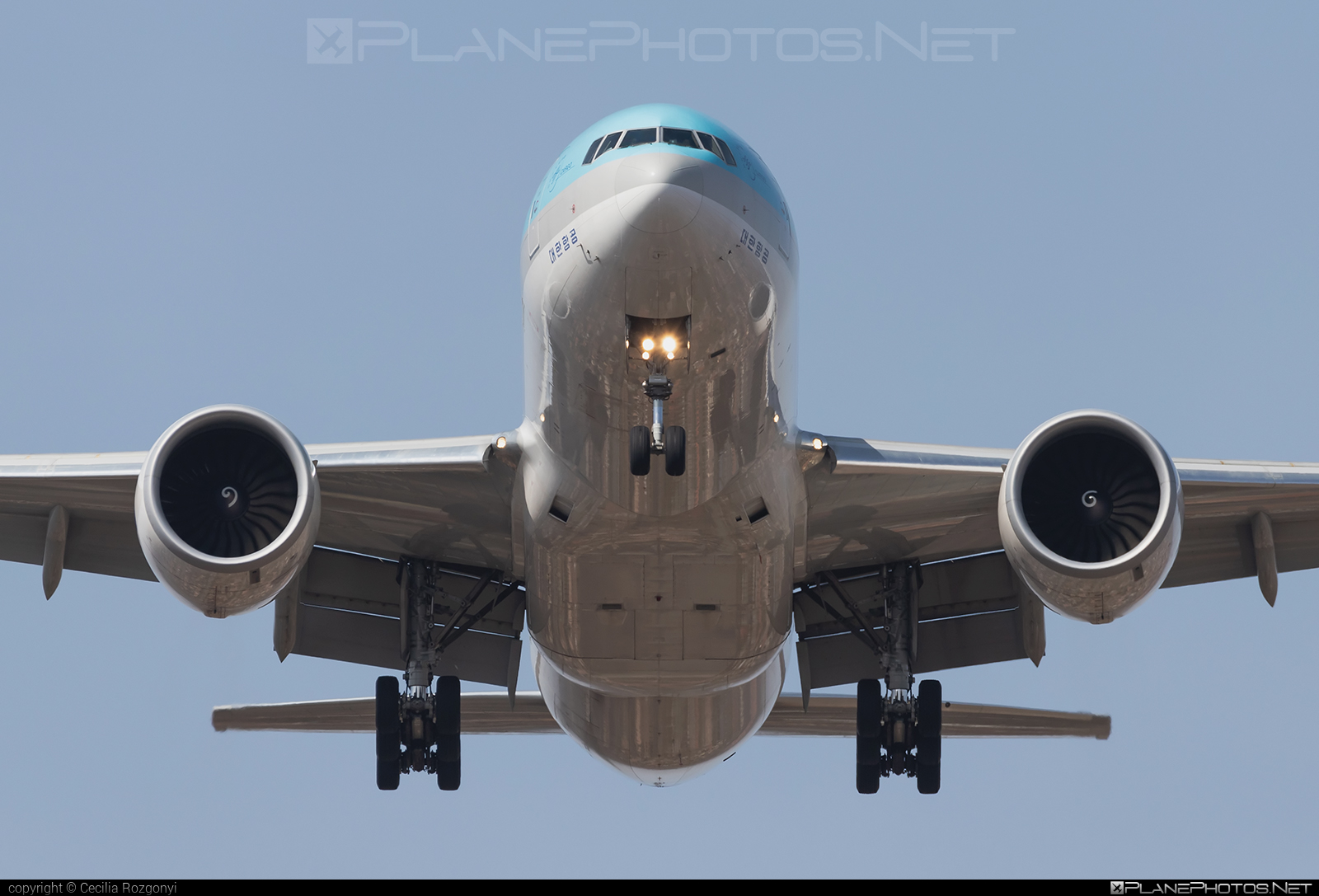 Boeing 777F - HL8045 operated by Korean Air Cargo #b777 #b777f #b777freighter #boeing #boeing777 #koreanair #koreanaircargo #tripleseven