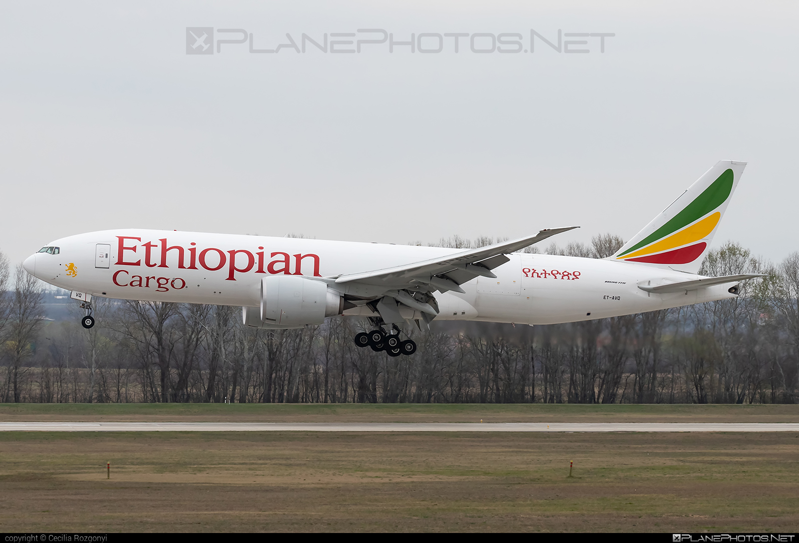 Boeing 777F - ET-AVQ operated by Ethiopian Cargo #b777 #b777f #b777freighter #boeing #boeing777 #tripleseven