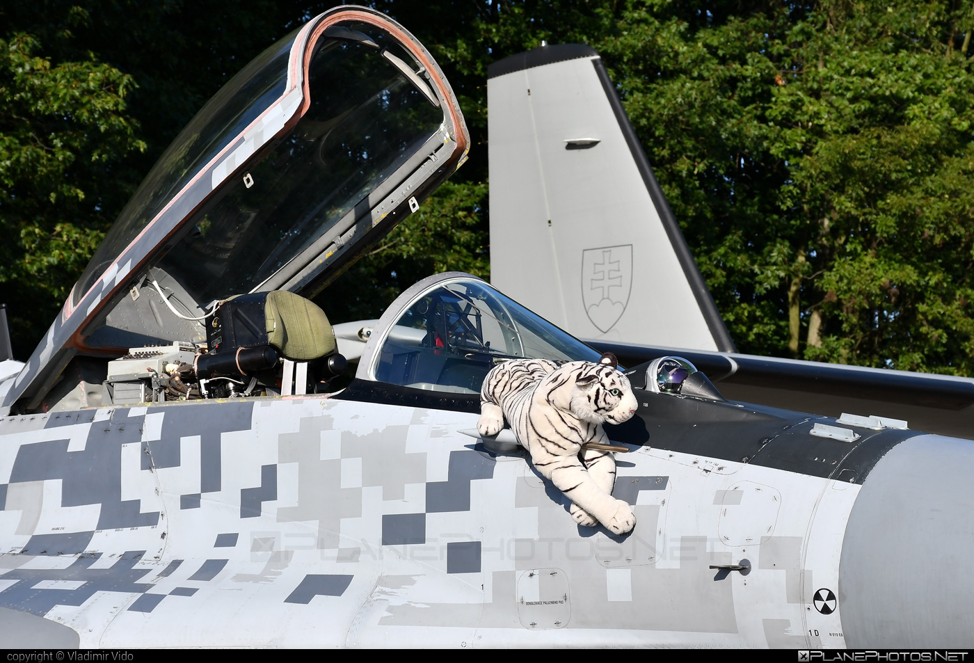Mikoyan-Gurevich MiG-29AS - 0619 operated by Vzdušné sily OS SR (Slovak Air Force) #mig #mig29 #mig29as #mikoyangurevich #slovakairforce #vzdusnesilyossr