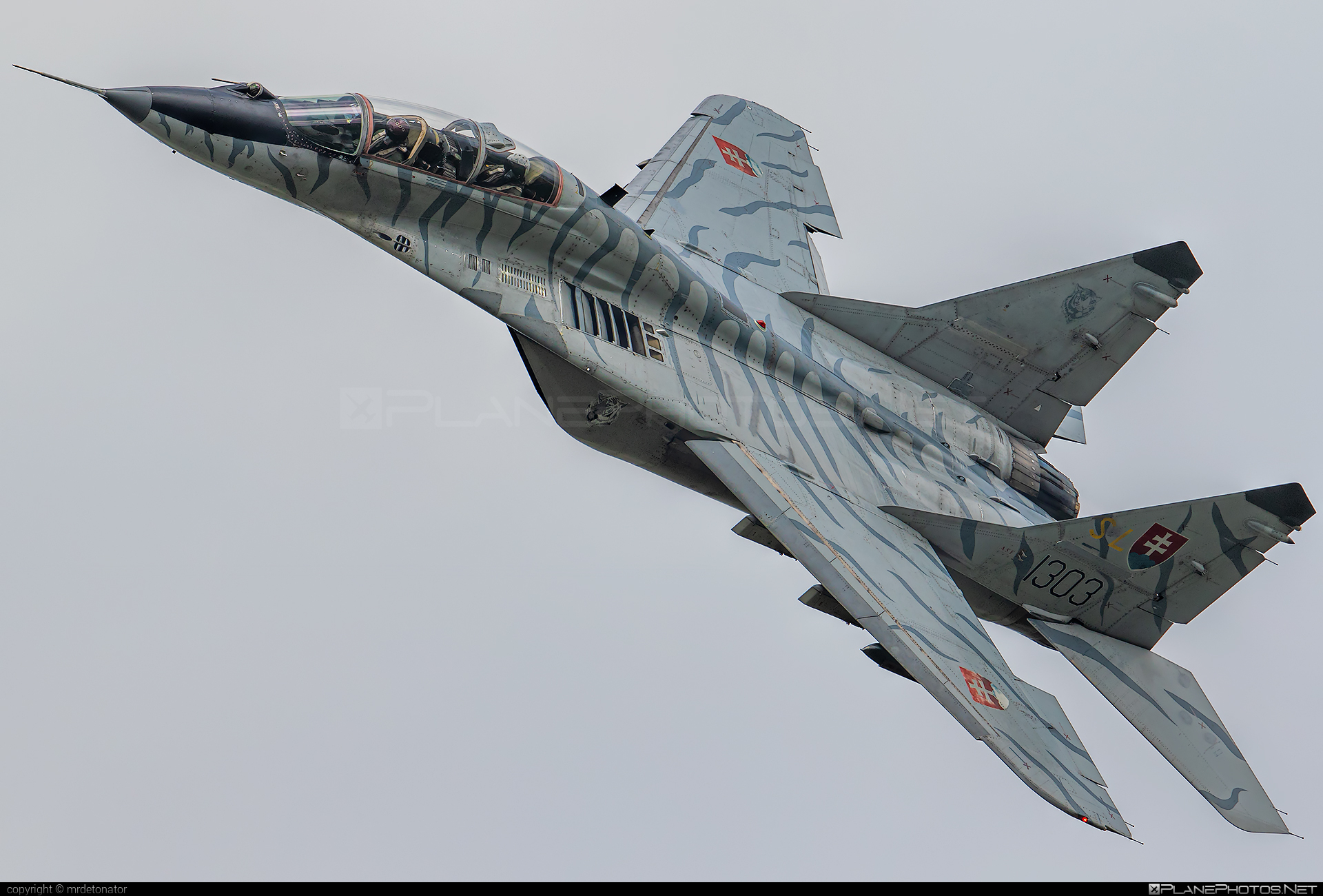 Mikoyan-Gurevich MiG-29UBS - 1303 operated by Vzdušné sily OS SR (Slovak Air Force) #mig #mig29 #mig29ubs #mikoyangurevich #siaf2018 #slovakairforce #vzdusnesilyossr