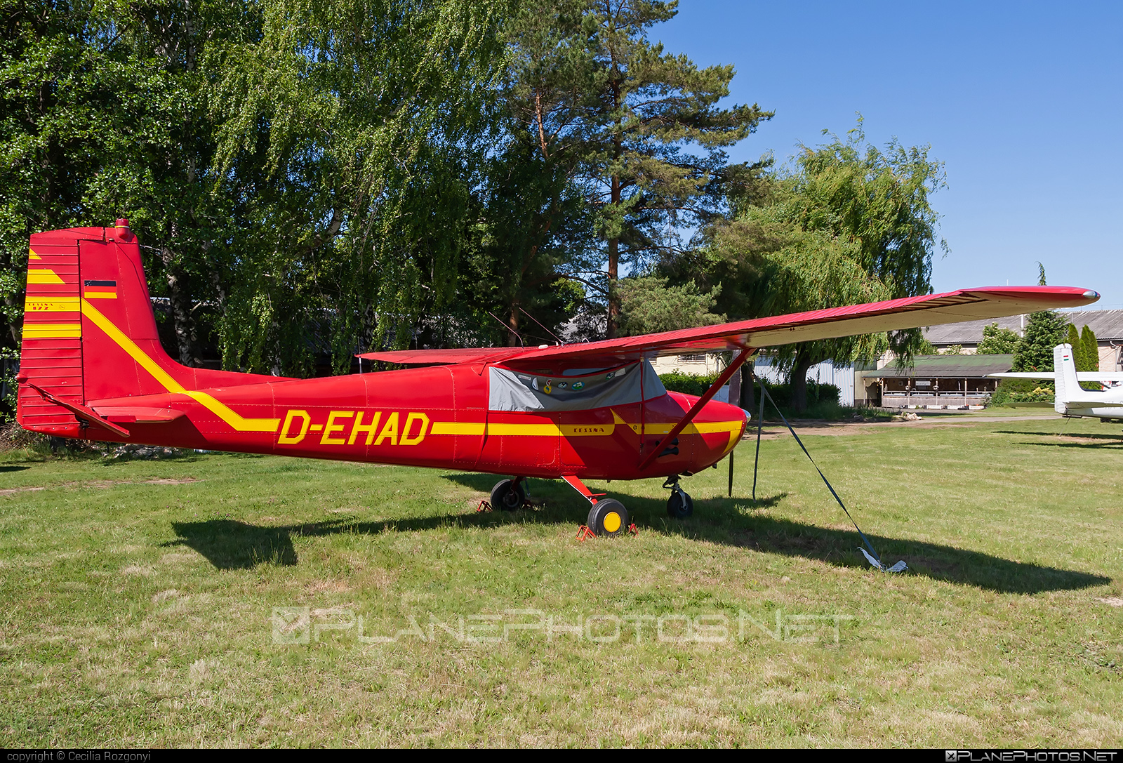 Cessna 172 Skyhawk - D-EHAD operated by Private operator #cessna #cessna172 #cessna172skyhawk #cessnaskyhawk